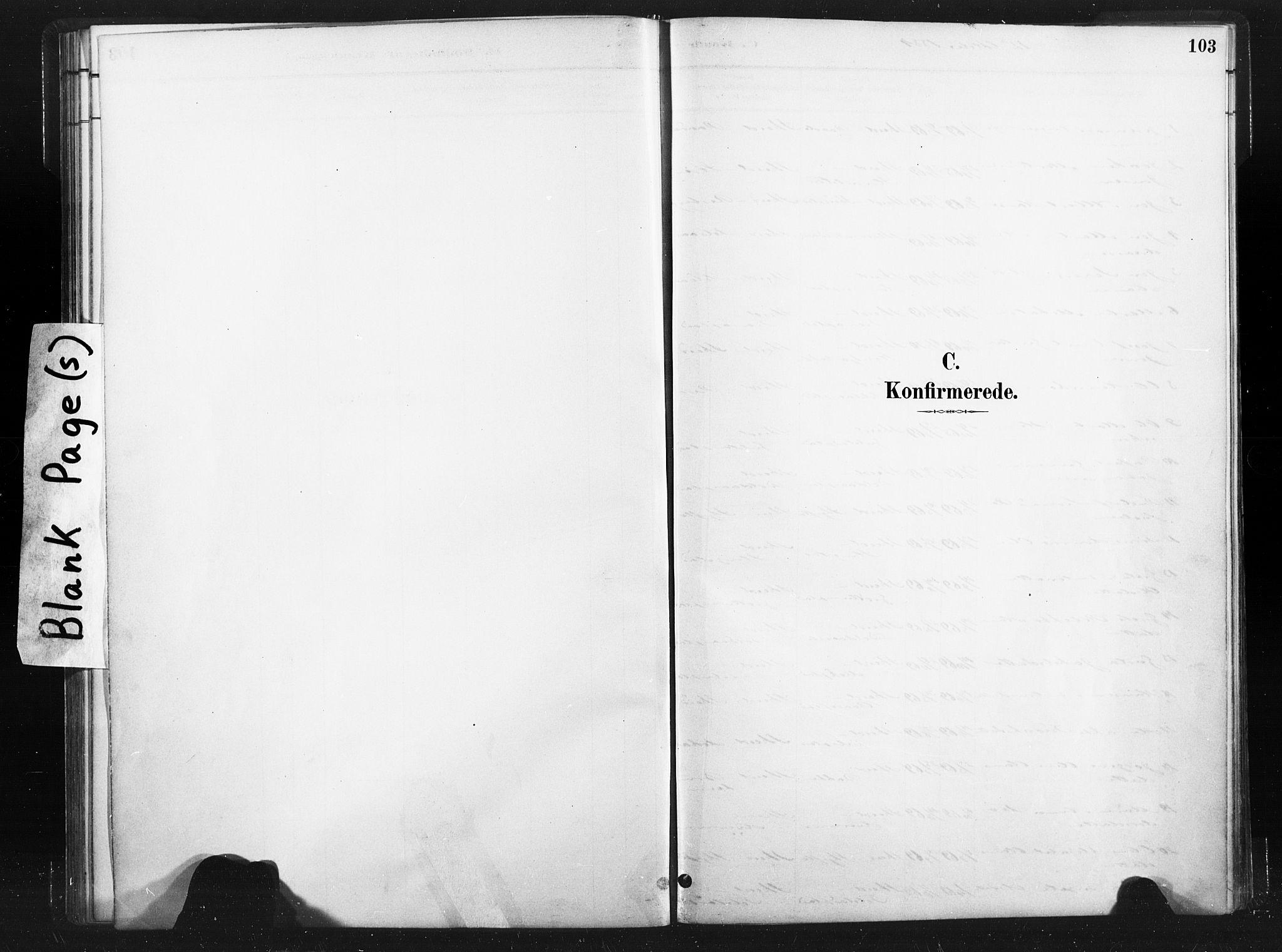 SAT, Ministerialprotokoller, klokkerbøker og fødselsregistre - Nord-Trøndelag, 736/L0361: Ministerialbok nr. 736A01, 1884-1906, s. 103