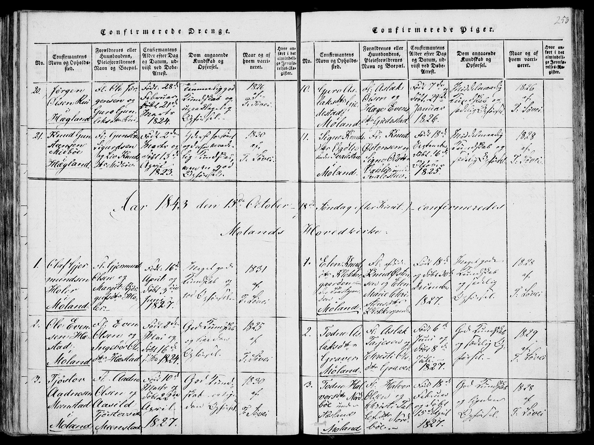 SAKO, Fyresdal kirkebøker, F/Fa/L0004: Ministerialbok nr. I 4, 1815-1854, s. 253