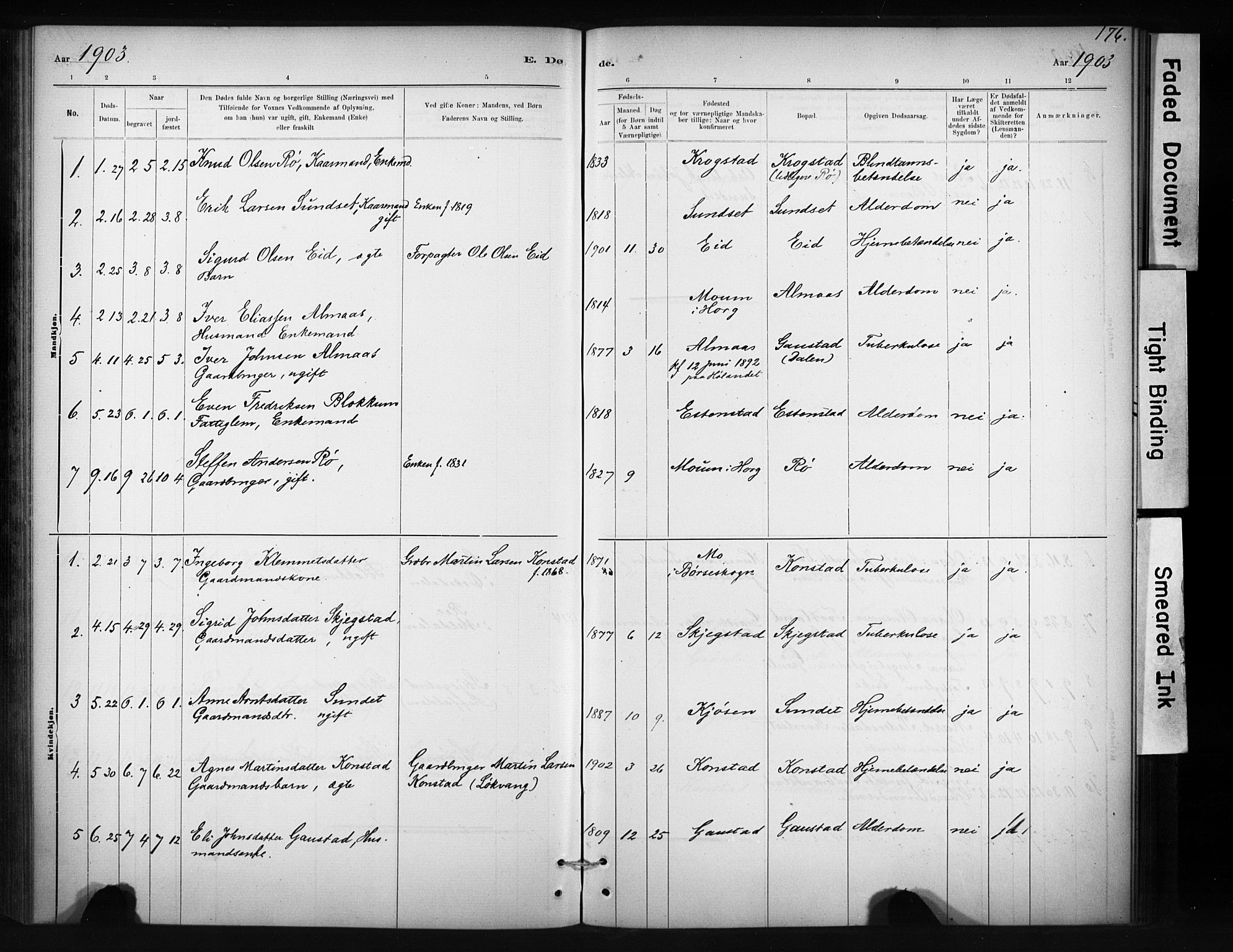 SAT, Ministerialprotokoller, klokkerbøker og fødselsregistre - Sør-Trøndelag, 694/L1127: Ministerialbok nr. 694A01, 1887-1905, s. 176