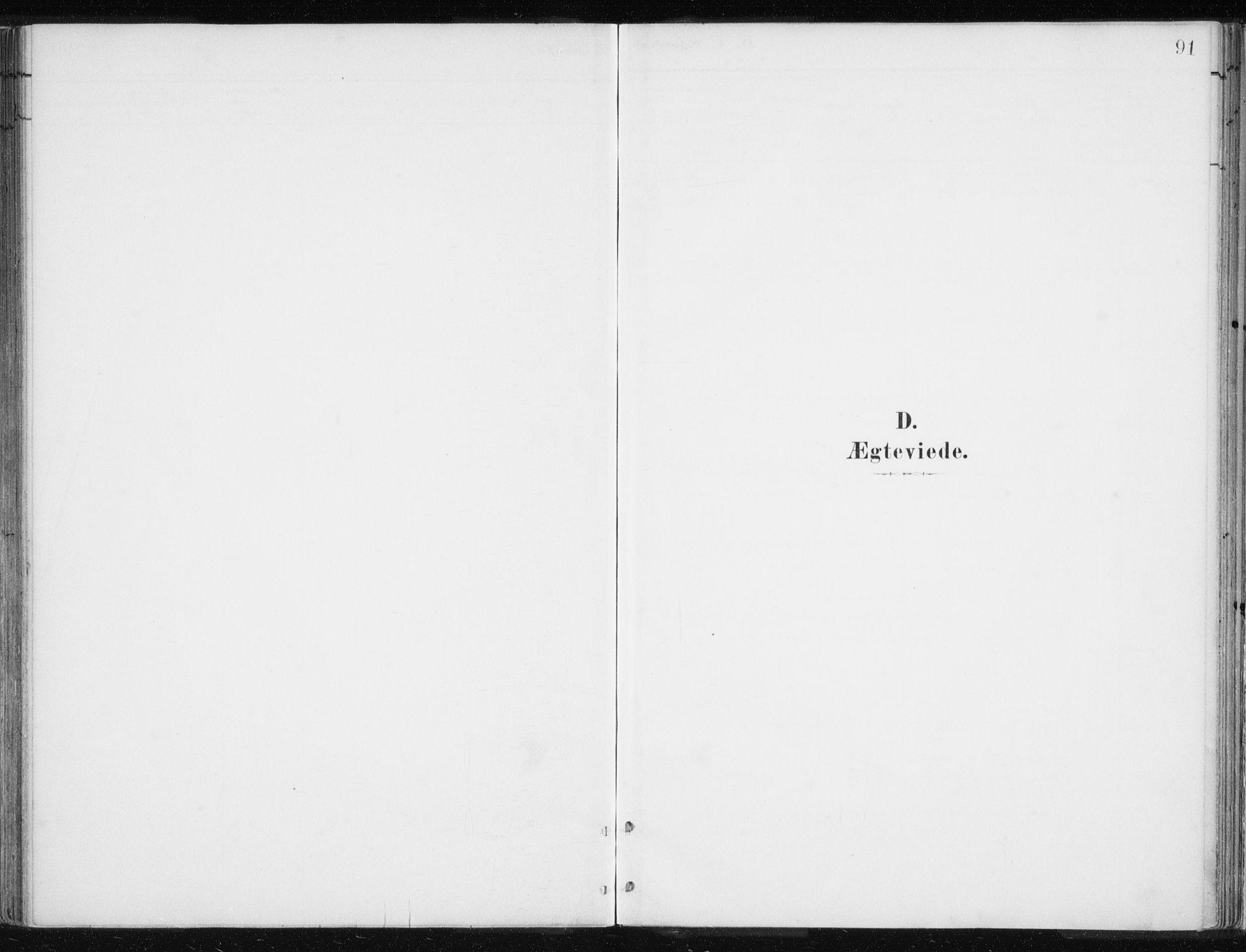 SATØ, Lyngen sokneprestembete, Ministerialbok nr. 10, 1883-1904, s. 91