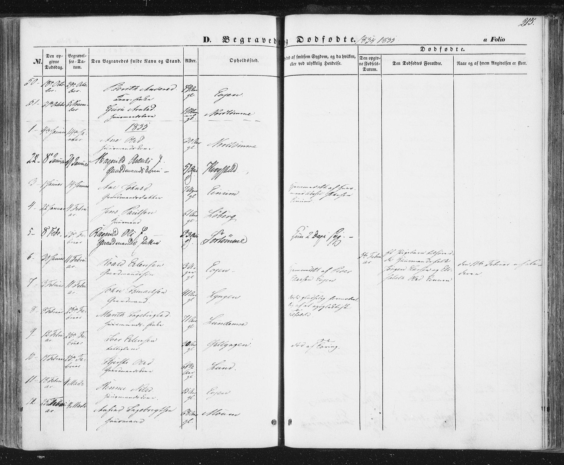SAT, Ministerialprotokoller, klokkerbøker og fødselsregistre - Sør-Trøndelag, 692/L1103: Ministerialbok nr. 692A03, 1849-1870, s. 215