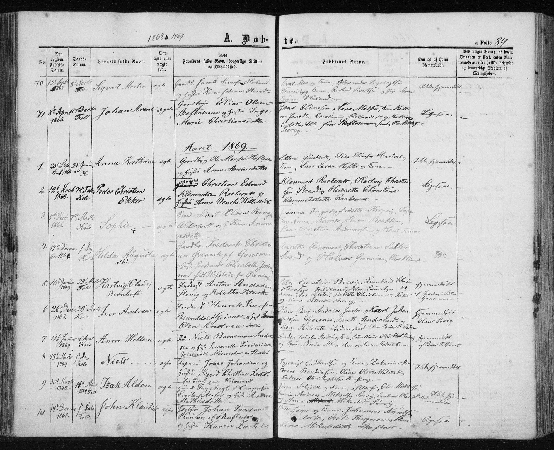SAT, Ministerialprotokoller, klokkerbøker og fødselsregistre - Nord-Trøndelag, 780/L0641: Ministerialbok nr. 780A06, 1857-1874, s. 89
