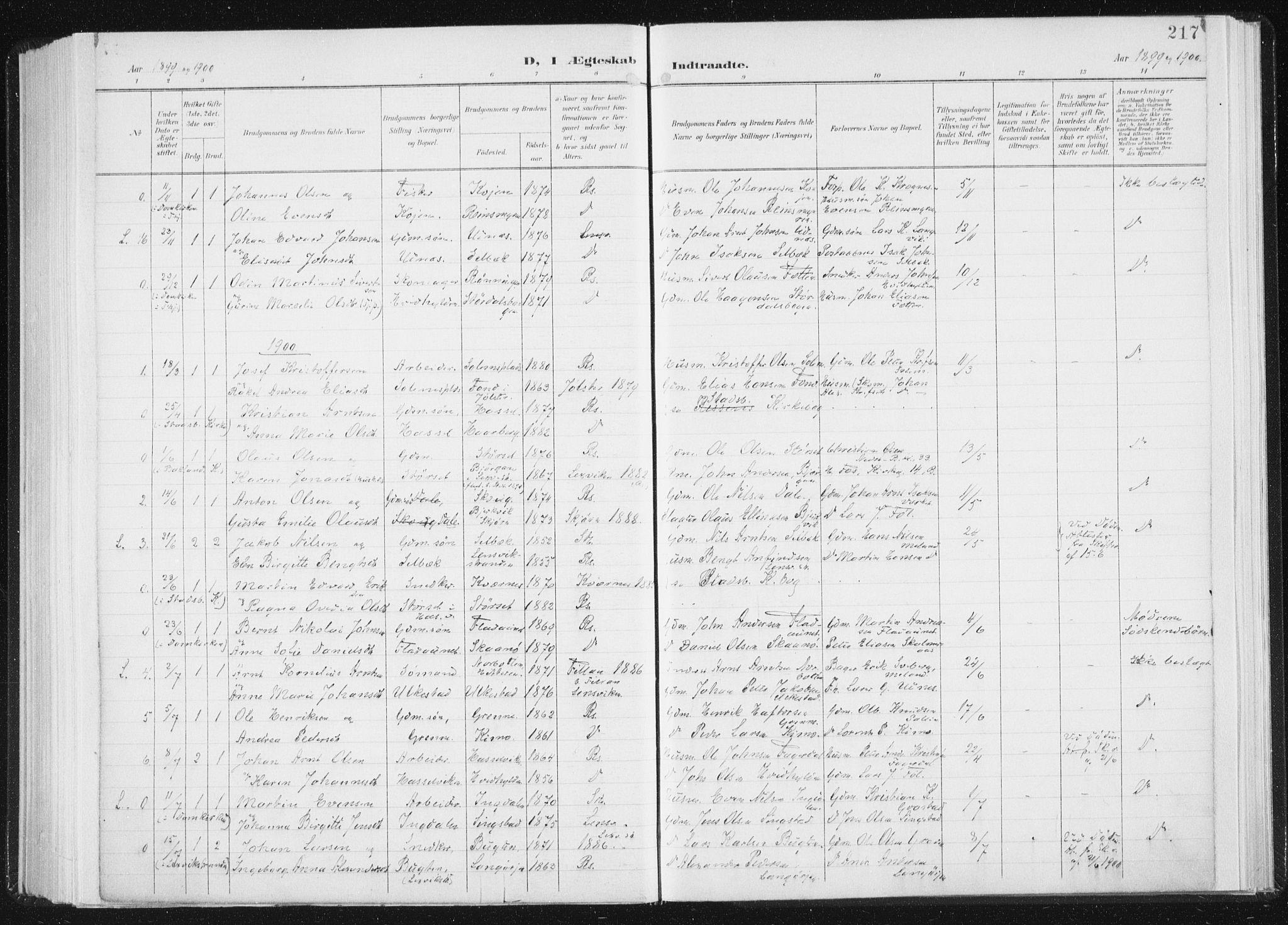 SAT, Ministerialprotokoller, klokkerbøker og fødselsregistre - Sør-Trøndelag, 647/L0635: Ministerialbok nr. 647A02, 1896-1911, s. 217