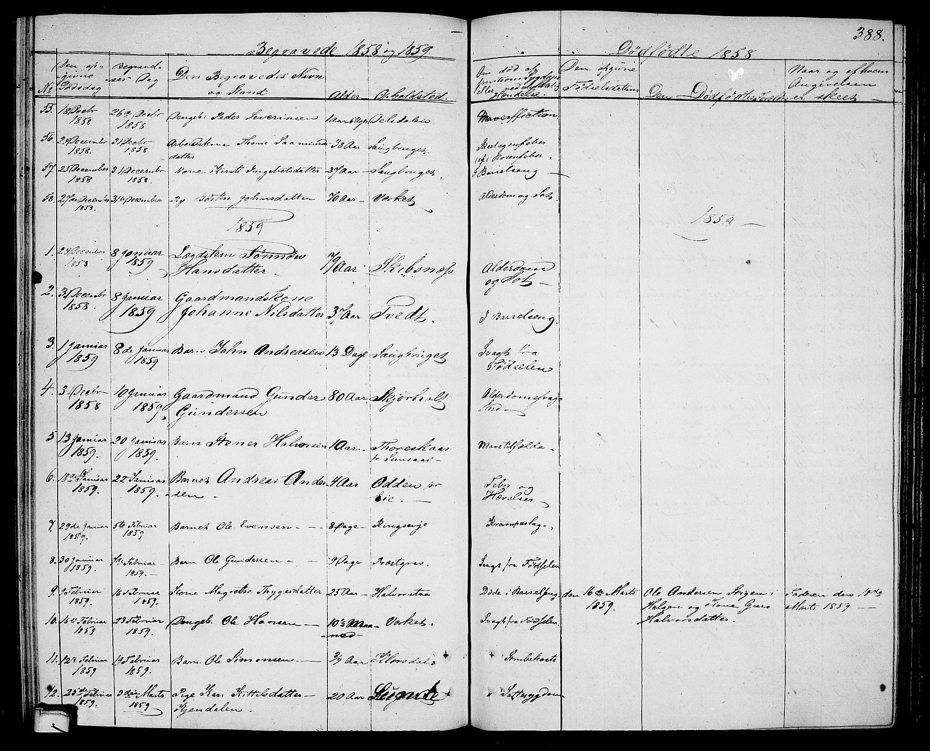 SAKO, Holla kirkebøker, G/Ga/L0003: Klokkerbok nr. I 3, 1849-1866, s. 388