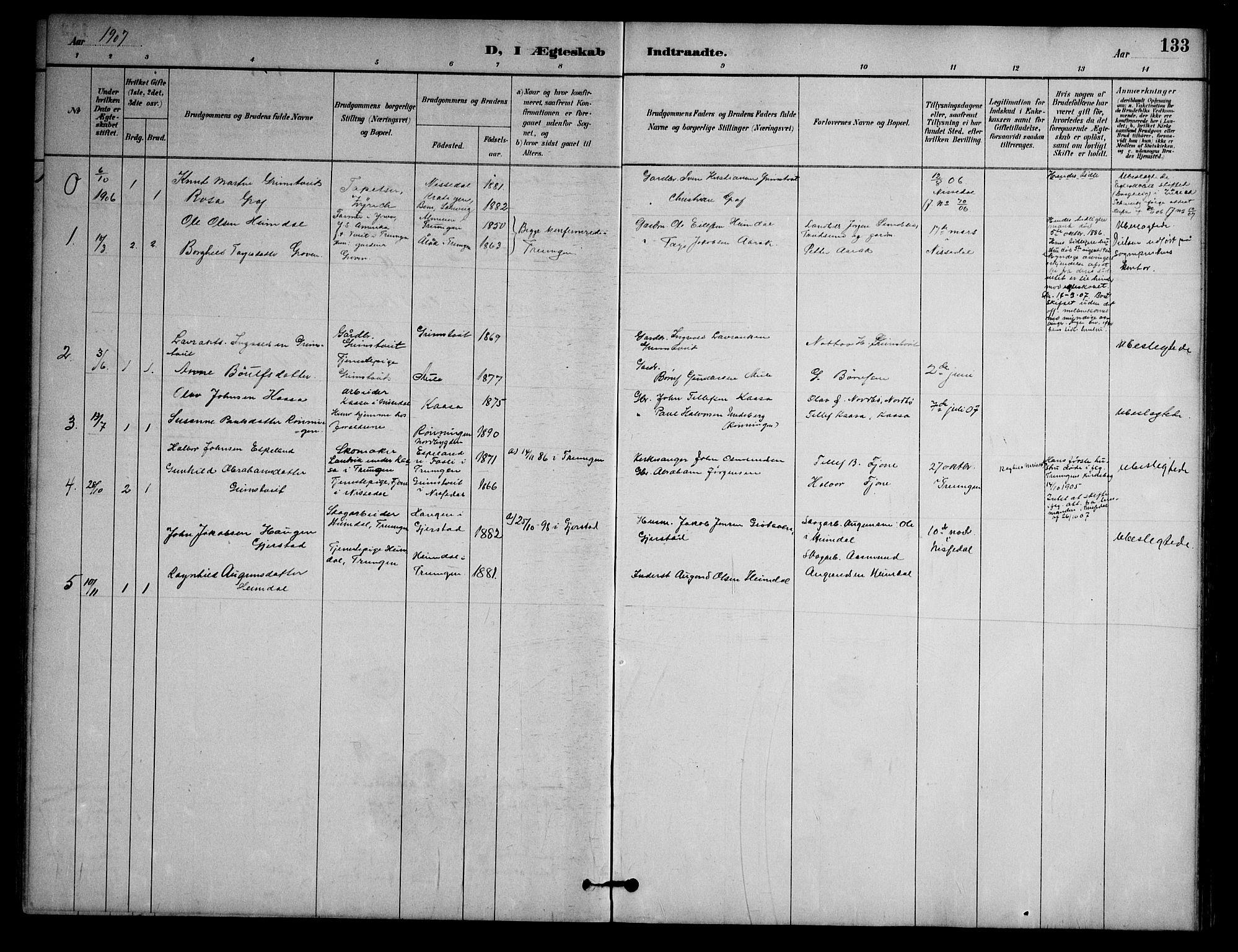 SAKO, Nissedal kirkebøker, G/Ga/L0003: Klokkerbok nr. I 3, 1887-1911, s. 133