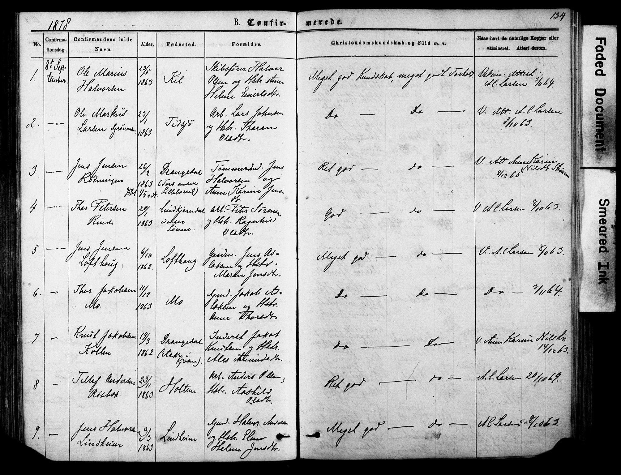 SAKO, Sannidal kirkebøker, F/Fa/L0014: Ministerialbok nr. 14, 1874-1883, s. 134