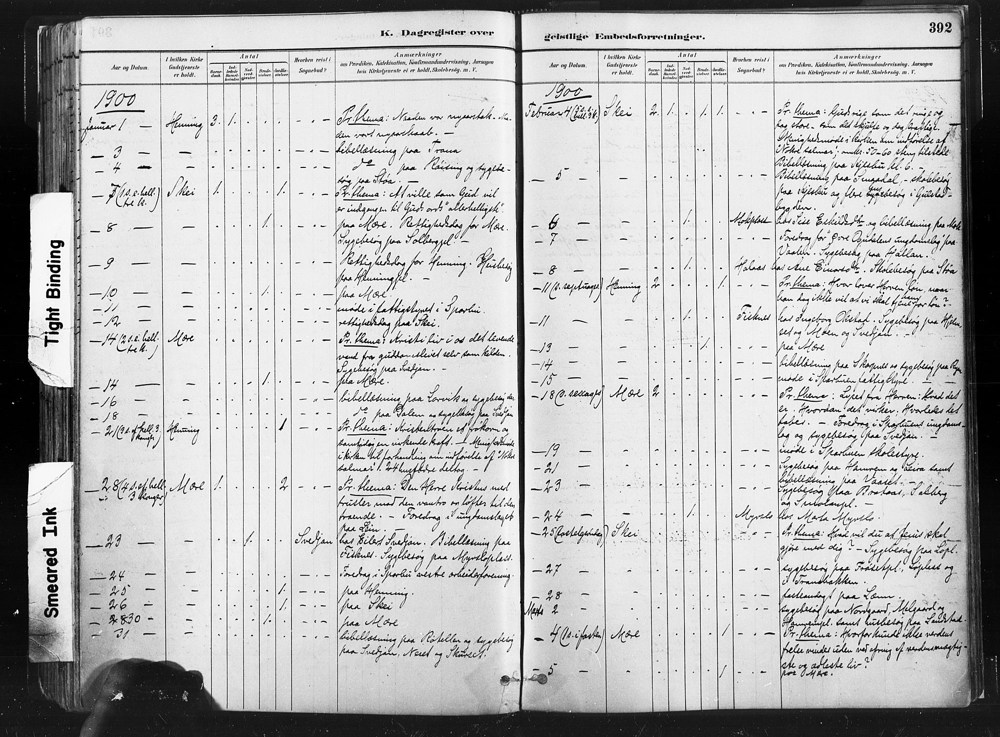 SAT, Ministerialprotokoller, klokkerbøker og fødselsregistre - Nord-Trøndelag, 735/L0351: Ministerialbok nr. 735A10, 1884-1908, s. 392