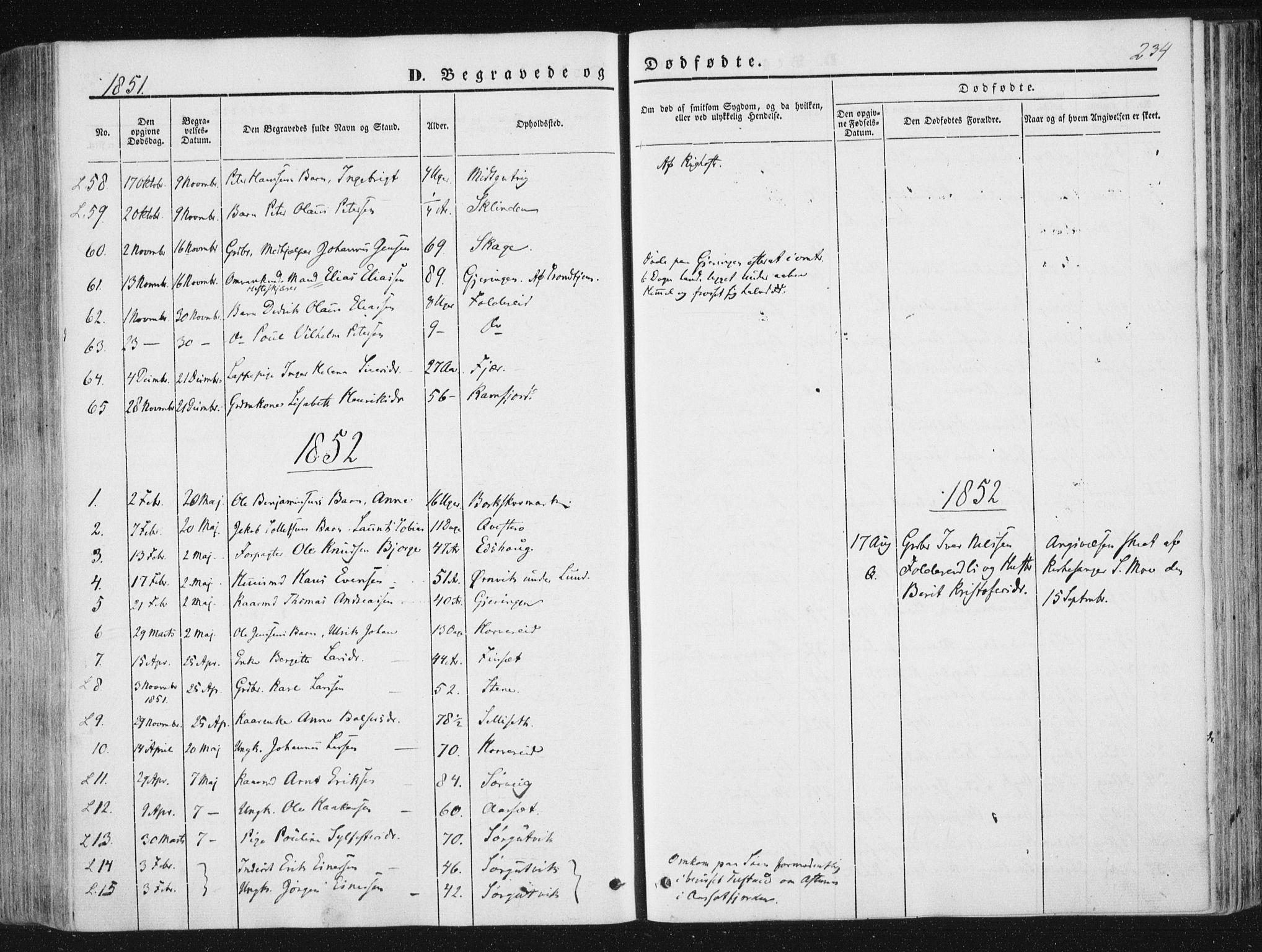 SAT, Ministerialprotokoller, klokkerbøker og fødselsregistre - Nord-Trøndelag, 780/L0640: Ministerialbok nr. 780A05, 1845-1856, s. 234