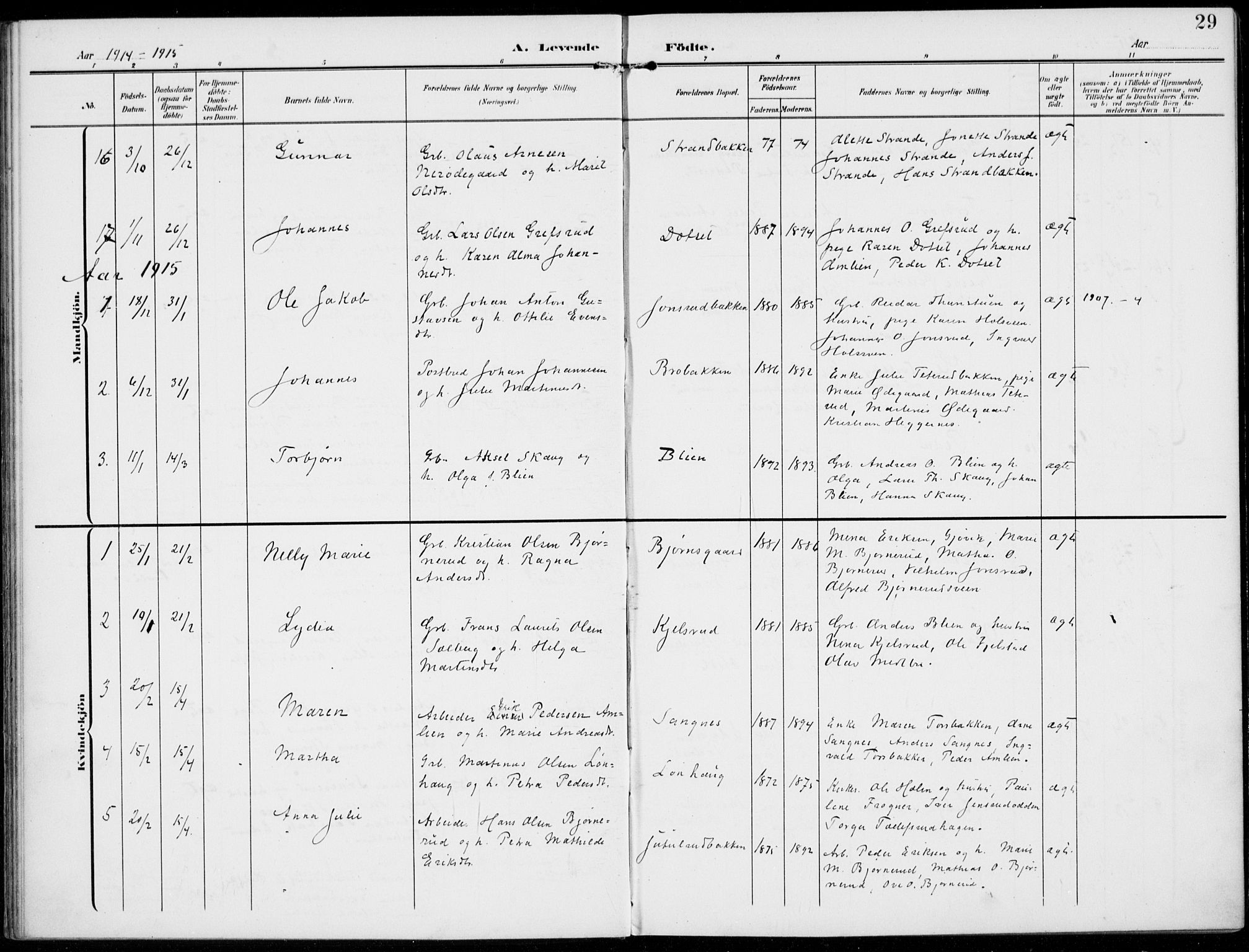 SAH, Kolbu prestekontor, Ministerialbok nr. 1, 1907-1923, s. 29