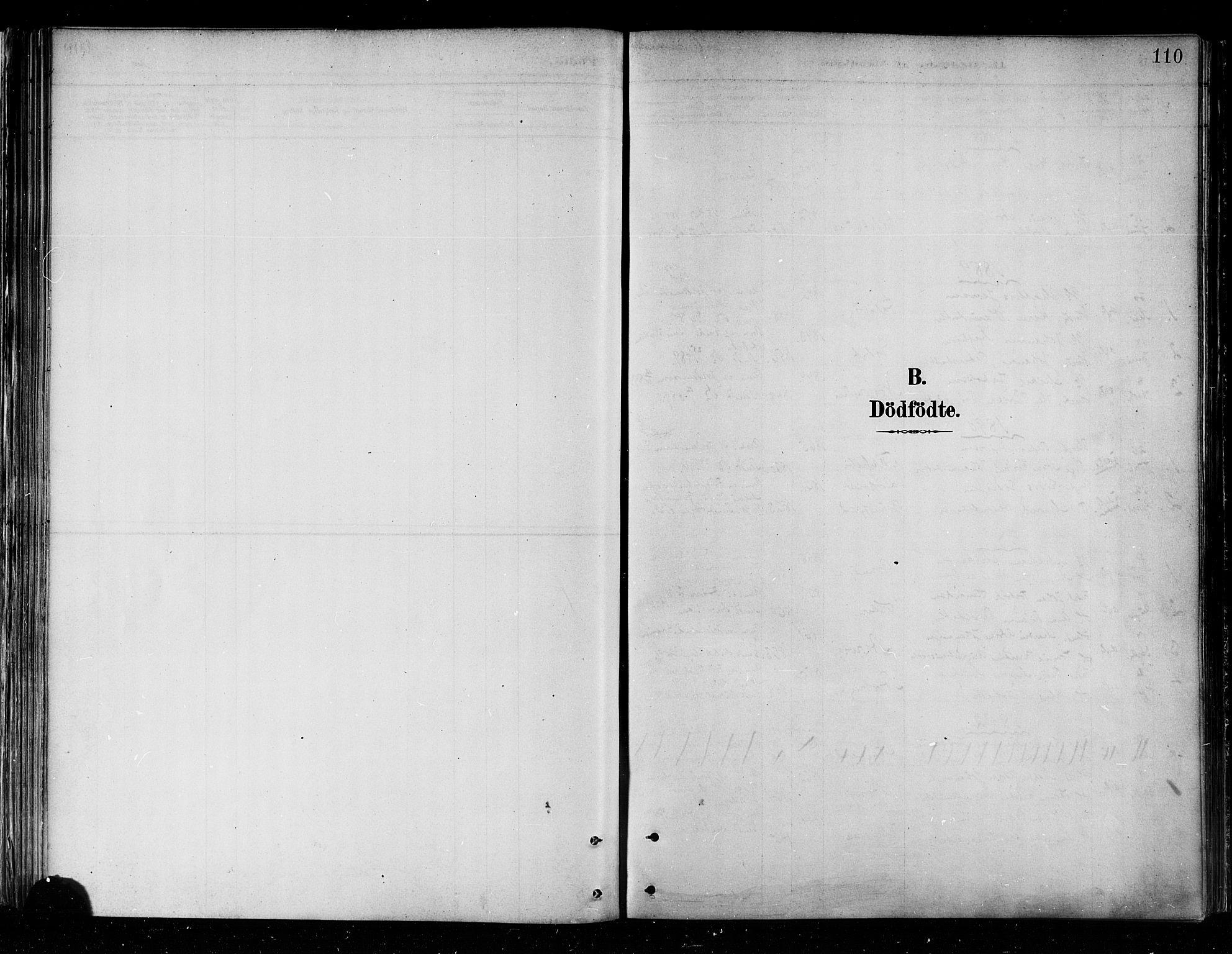 SATØ, Skjervøy sokneprestkontor, H/Ha/Haa/L0010kirke: Ministerialbok nr. 10, 1887-1898, s. 110