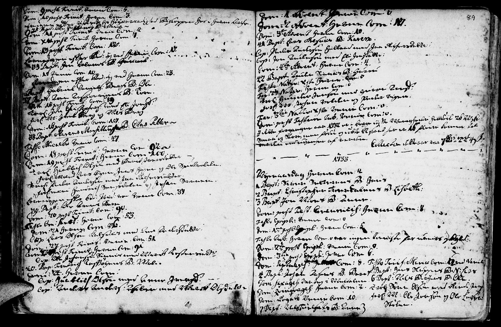 SAT, Ministerialprotokoller, klokkerbøker og fødselsregistre - Sør-Trøndelag, 630/L0488: Ministerialbok nr. 630A01, 1717-1756, s. 88-89