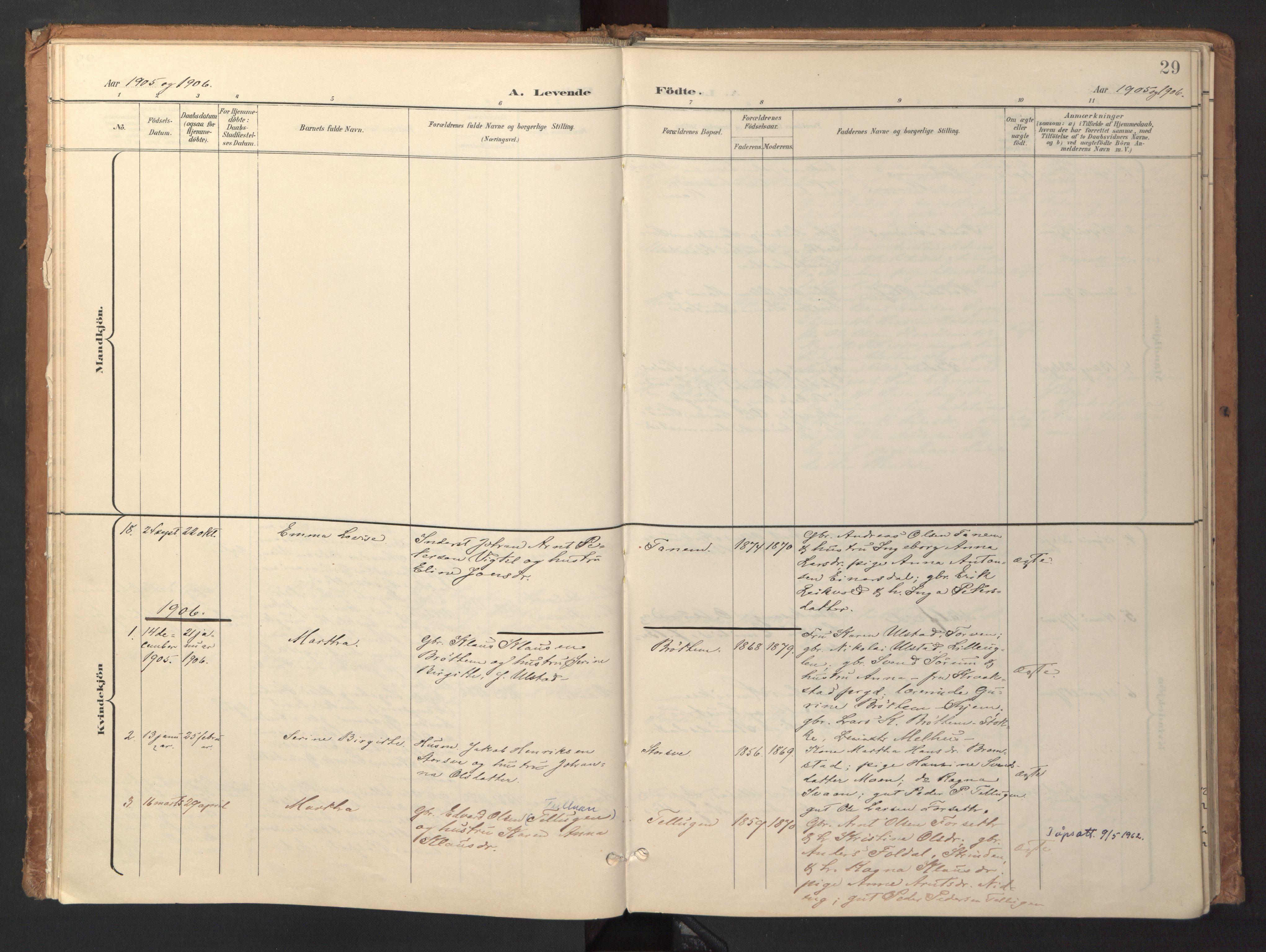 SAT, Ministerialprotokoller, klokkerbøker og fødselsregistre - Sør-Trøndelag, 618/L0448: Ministerialbok nr. 618A11, 1898-1916, s. 29