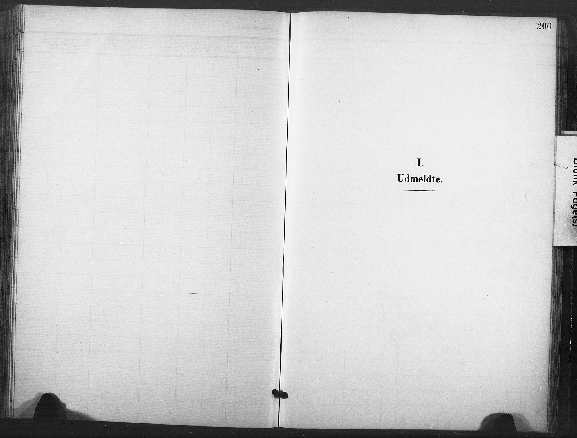 SAT, Ministerialprotokoller, klokkerbøker og fødselsregistre - Nord-Trøndelag, 713/L0122: Ministerialbok nr. 713A11, 1899-1910, s. 206