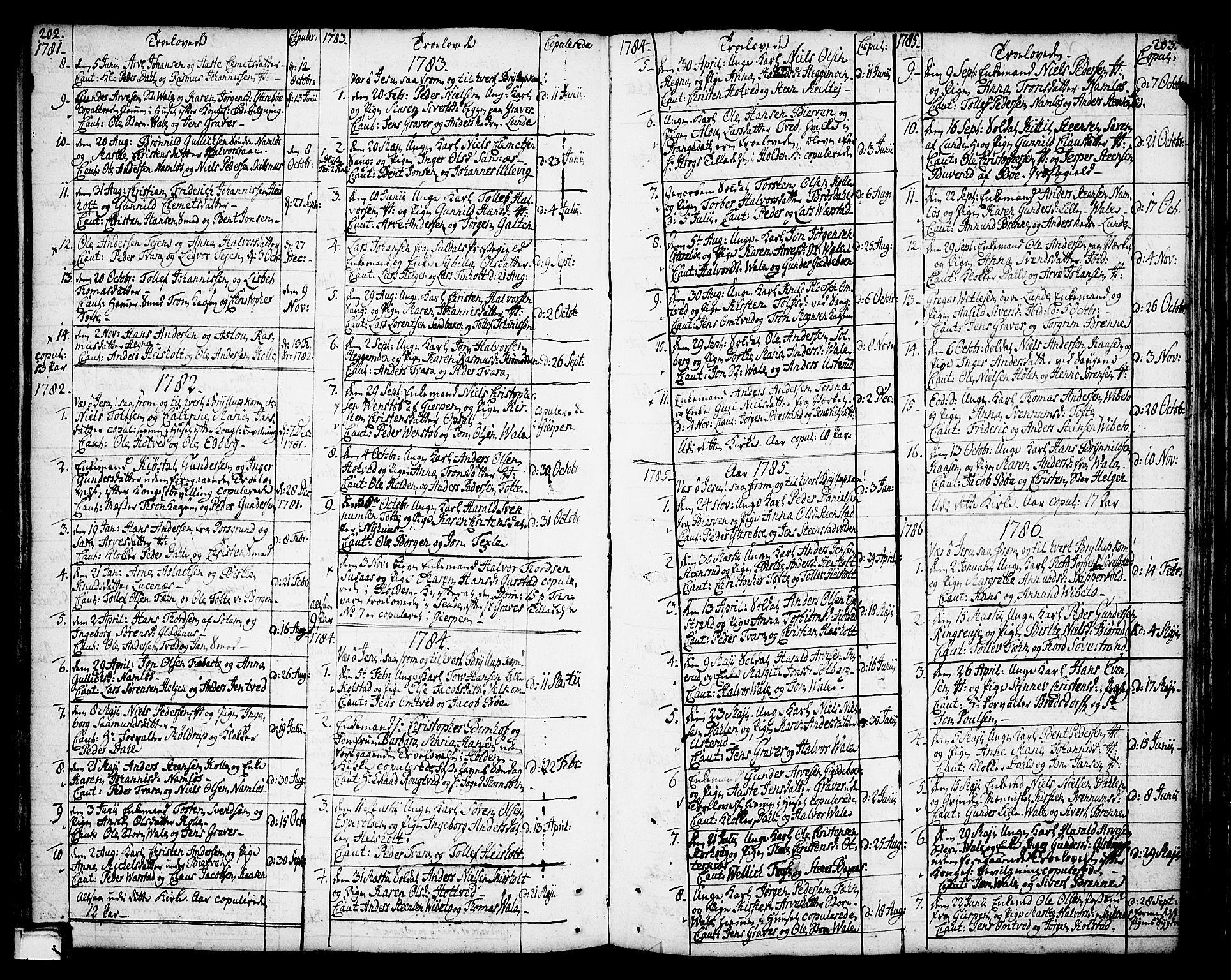 SAKO, Holla kirkebøker, F/Fa/L0002: Ministerialbok nr. 2, 1779-1814, s. 202-203