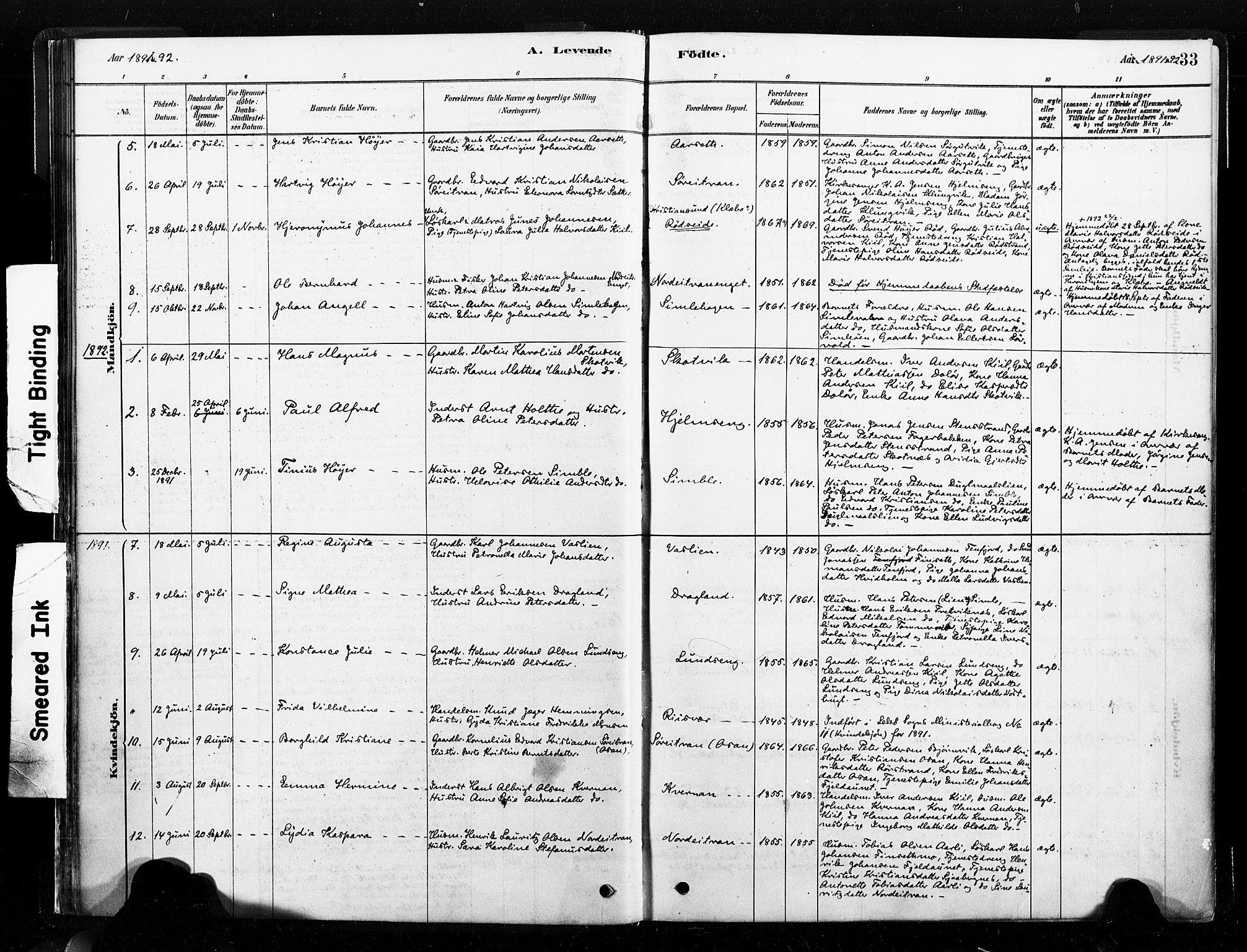 SAT, Ministerialprotokoller, klokkerbøker og fødselsregistre - Nord-Trøndelag, 789/L0705: Ministerialbok nr. 789A01, 1878-1910, s. 33