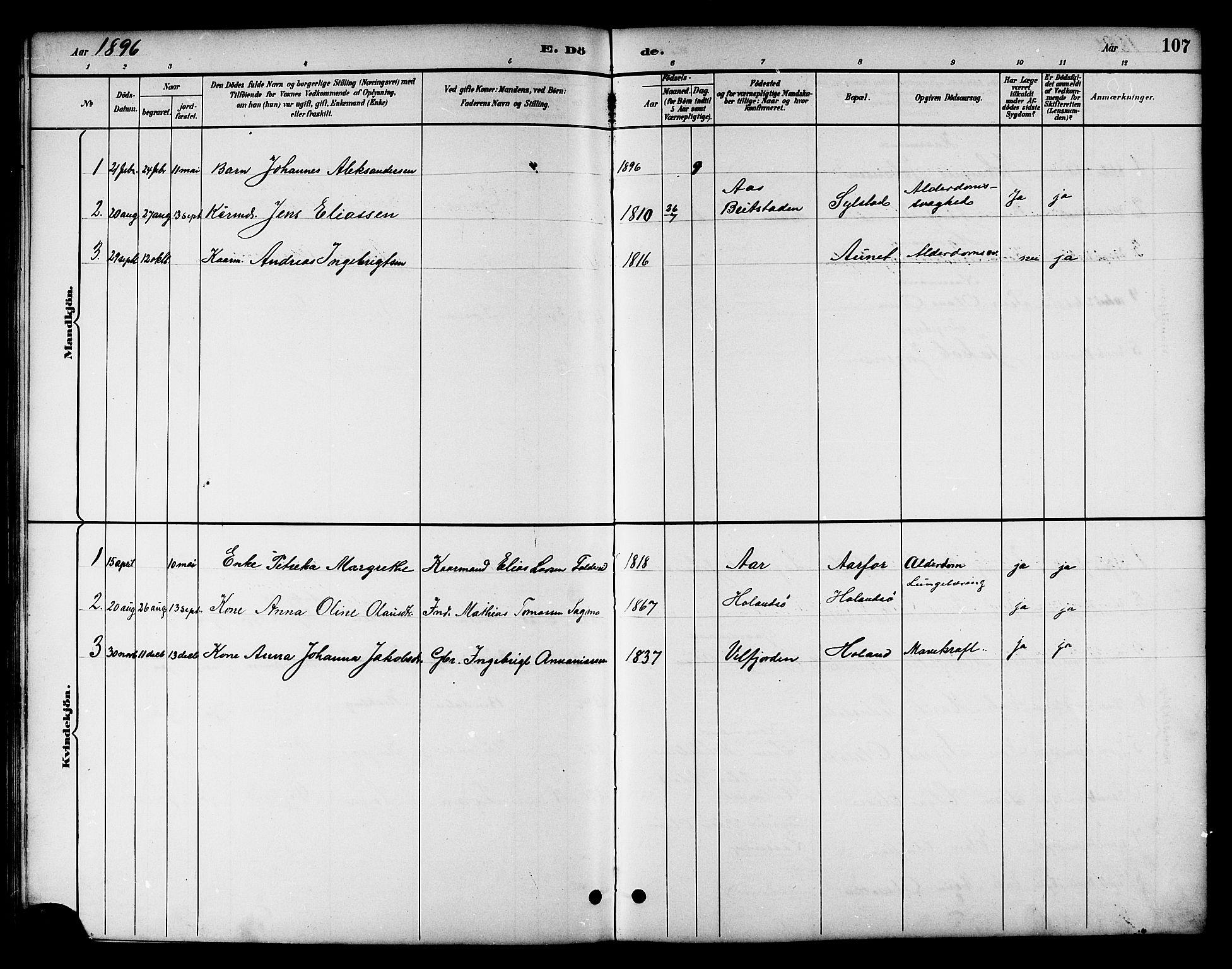 SAT, Ministerialprotokoller, klokkerbøker og fødselsregistre - Nord-Trøndelag, 783/L0662: Klokkerbok nr. 783C02, 1894-1919, s. 107