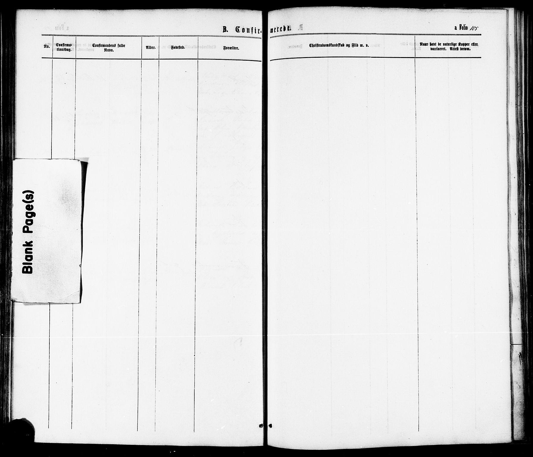 SAT, Ministerialprotokoller, klokkerbøker og fødselsregistre - Nord-Trøndelag, 739/L0370: Ministerialbok nr. 739A02, 1868-1881, s. 105