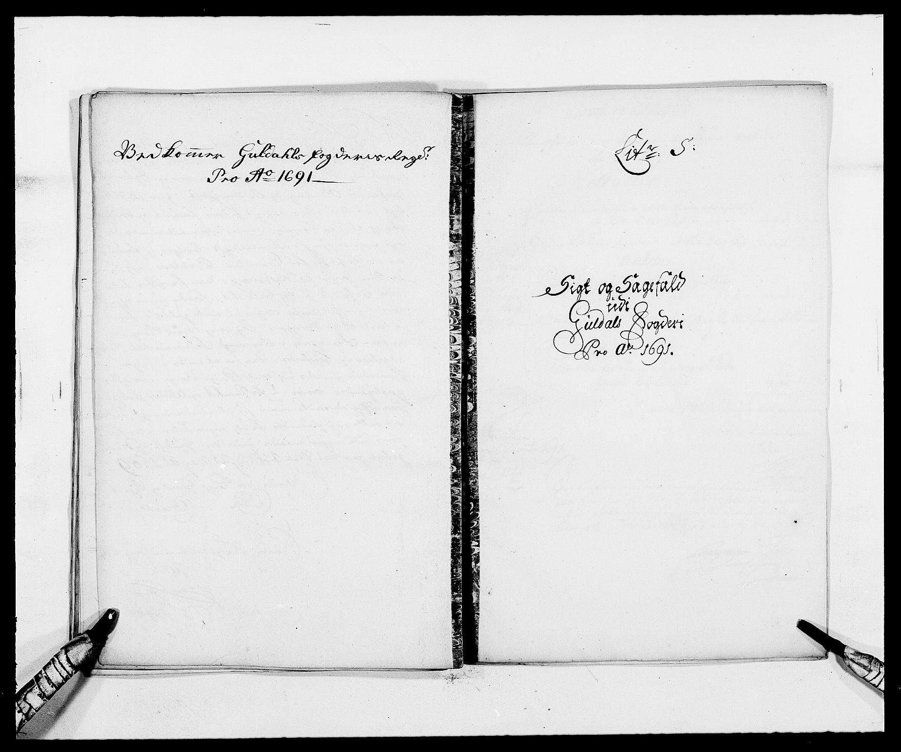 RA, Rentekammeret inntil 1814, Reviderte regnskaper, Fogderegnskap, R59/L3941: Fogderegnskap Gauldal, 1691, s. 155