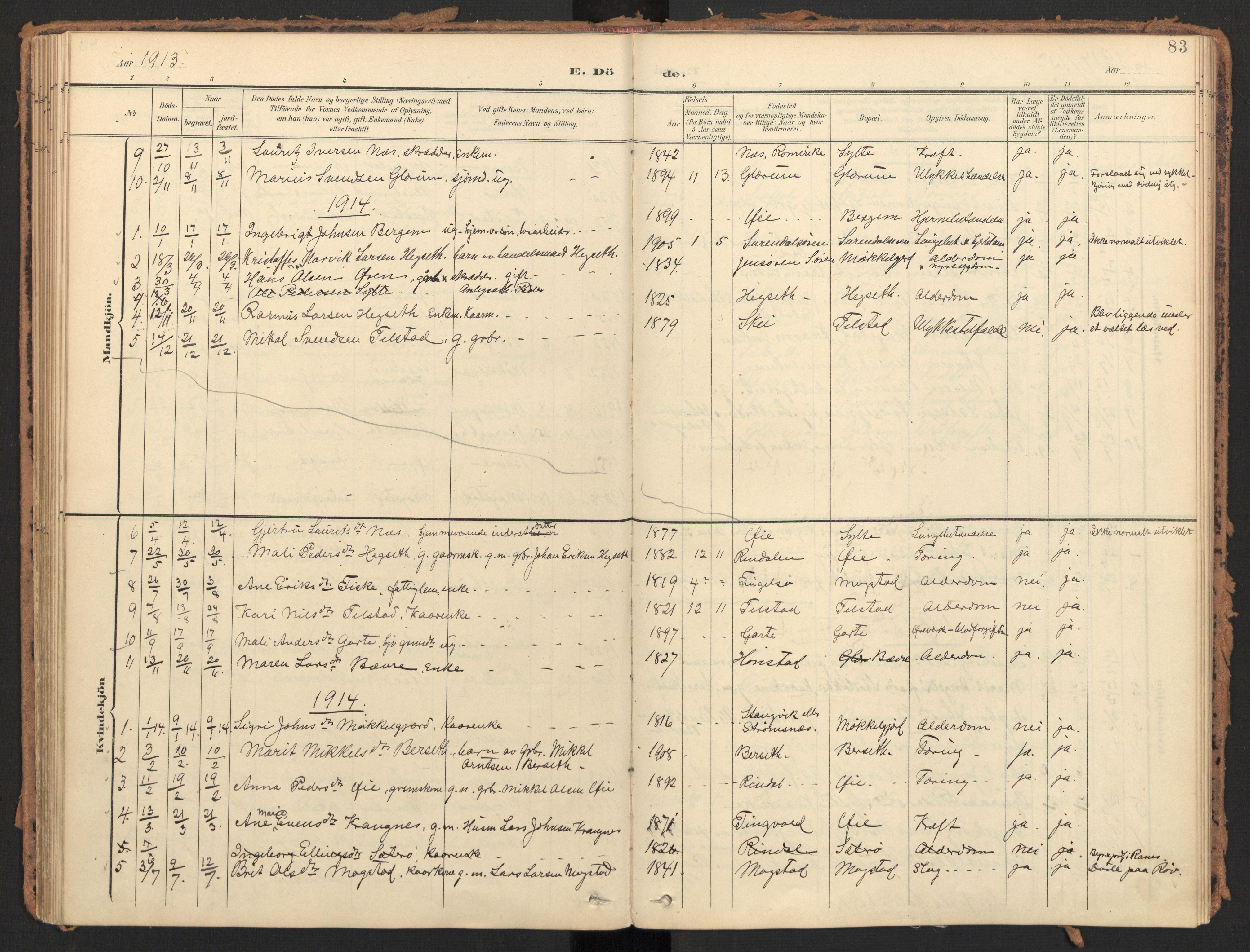 SAT, Ministerialprotokoller, klokkerbøker og fødselsregistre - Møre og Romsdal, 595/L1048: Ministerialbok nr. 595A10, 1900-1917, s. 83