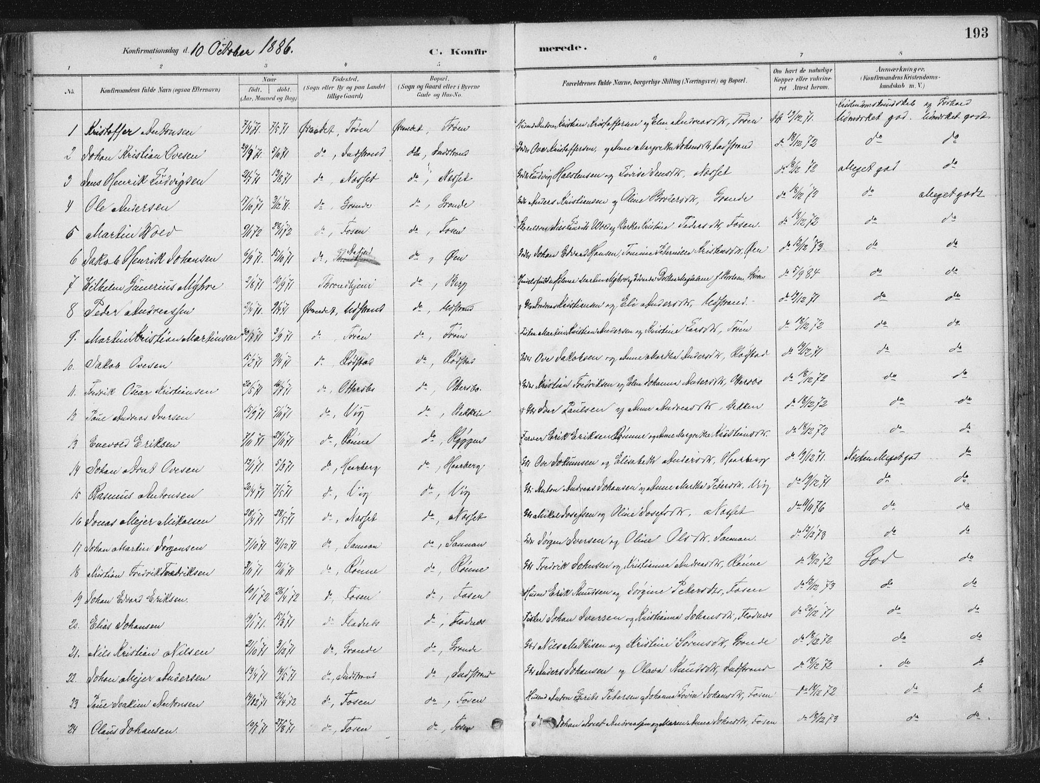 SAT, Ministerialprotokoller, klokkerbøker og fødselsregistre - Sør-Trøndelag, 659/L0739: Ministerialbok nr. 659A09, 1879-1893, s. 193