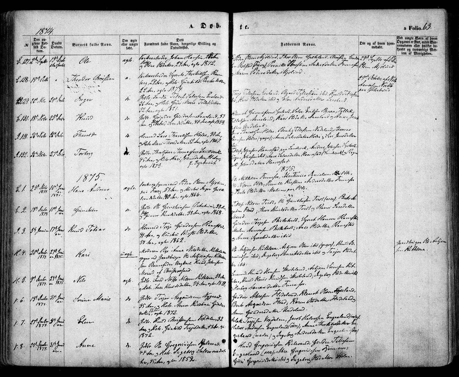 SAK, Evje sokneprestkontor, F/Fa/Faa/L0006: Ministerialbok nr. A 6, 1866-1884, s. 63