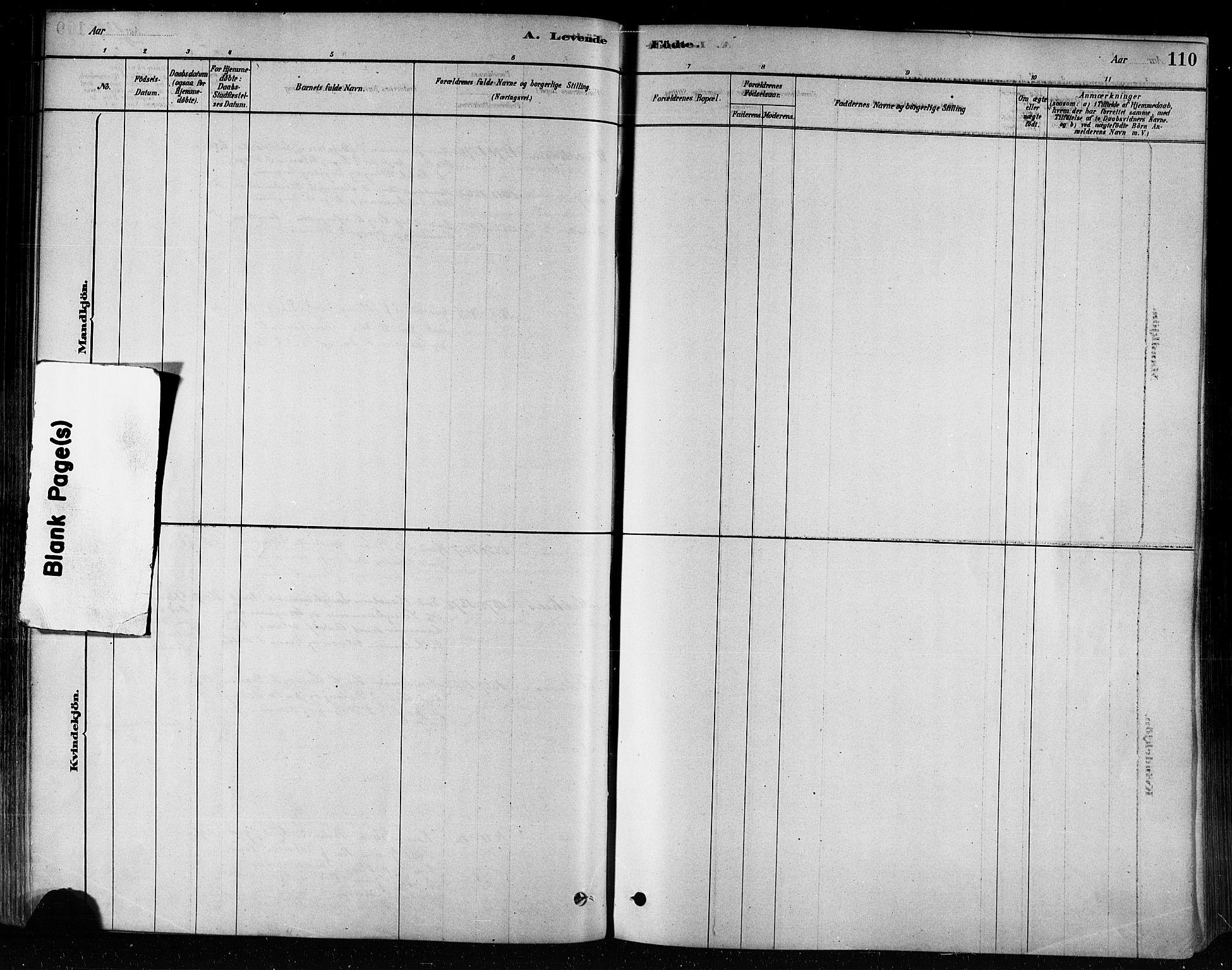 SAT, Ministerialprotokoller, klokkerbøker og fødselsregistre - Nord-Trøndelag, 746/L0449: Ministerialbok nr. 746A07 /3, 1878-1899, s. 110