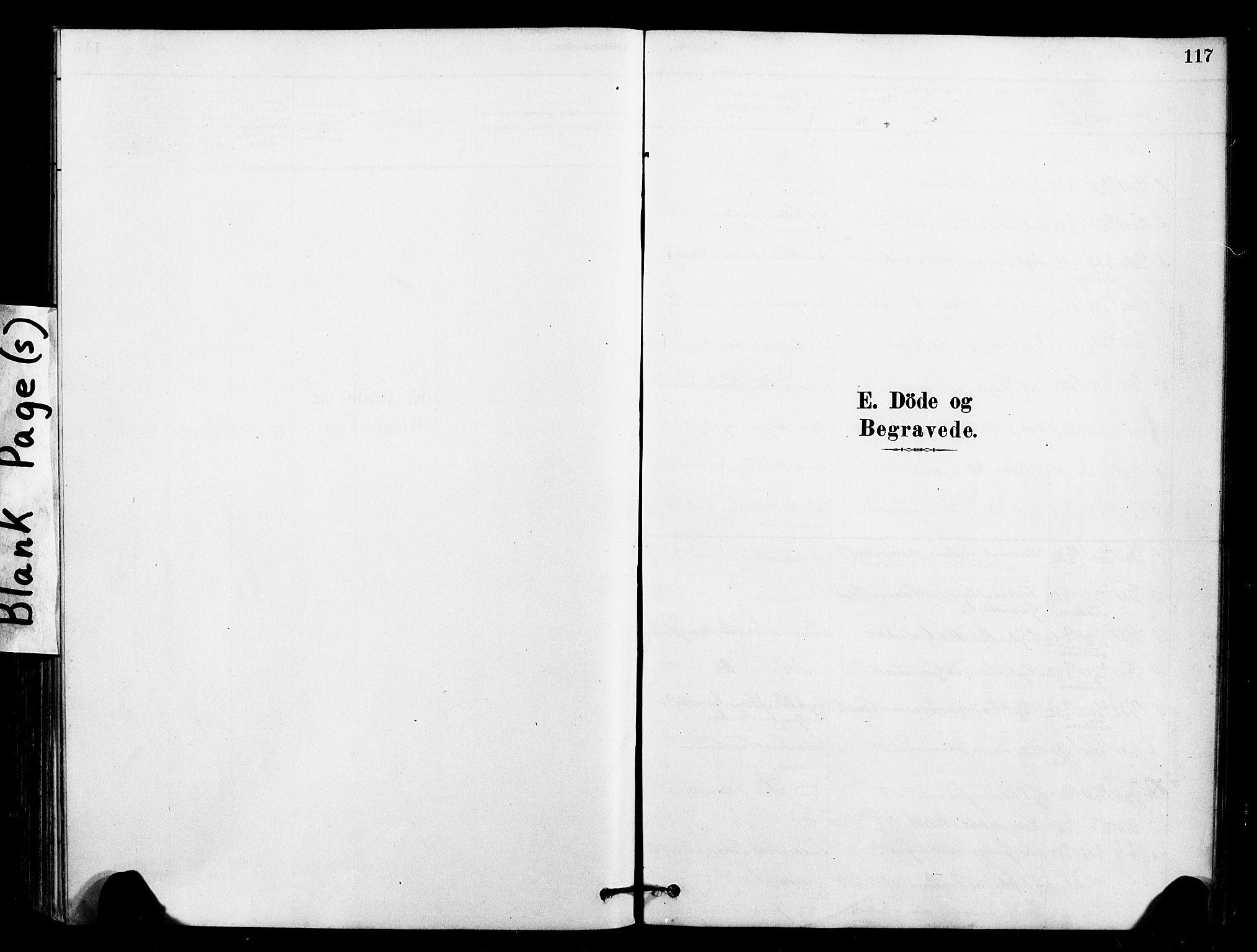 SAT, Ministerialprotokoller, klokkerbøker og fødselsregistre - Sør-Trøndelag, 641/L0595: Ministerialbok nr. 641A01, 1882-1897, s. 117