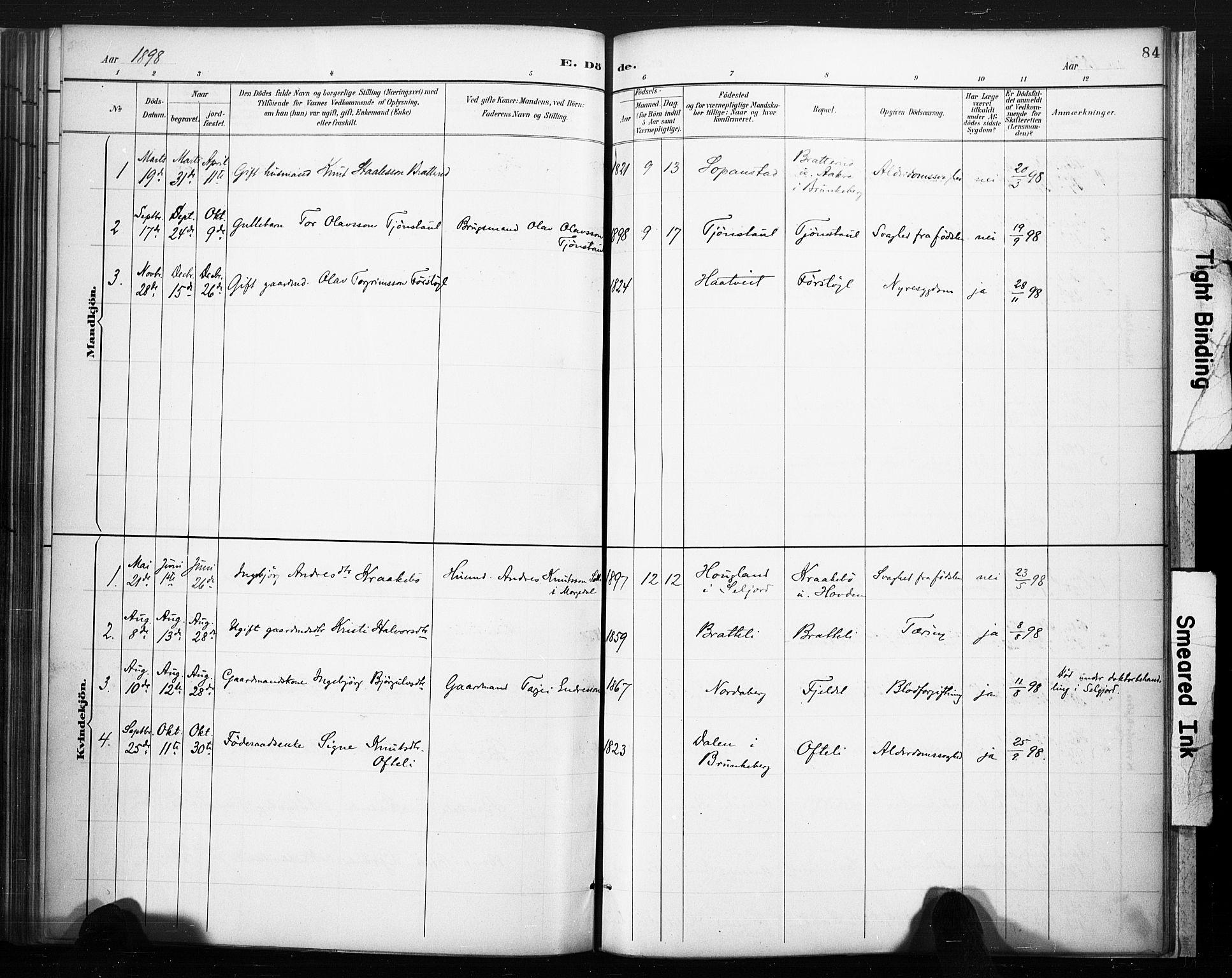 SAKO, Lårdal kirkebøker, F/Fc/L0002: Ministerialbok nr. III 2, 1887-1906, s. 84