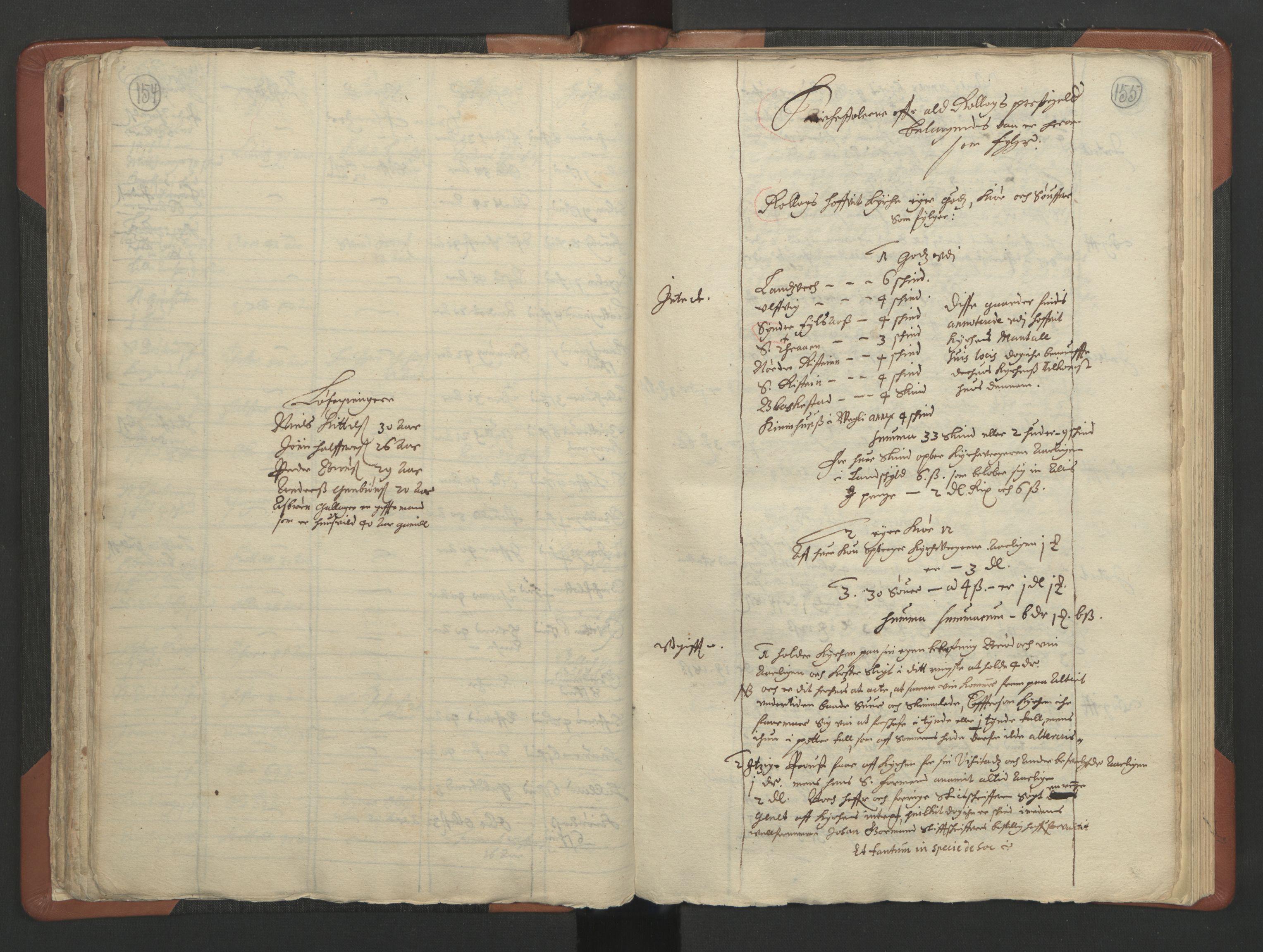 RA, Sogneprestenes manntall 1664-1666, nr. 11: Brunlanes prosti, 1664-1666, s. 154-155