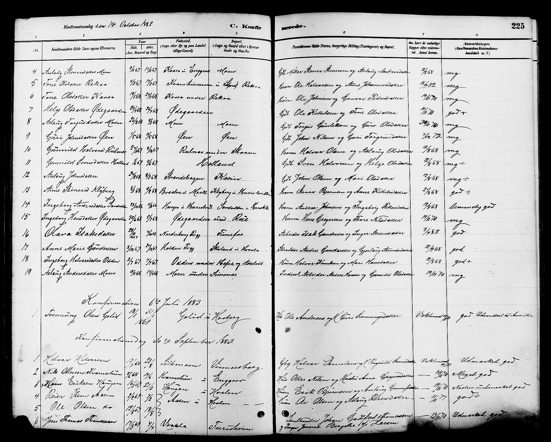 SAKO, Heddal kirkebøker, G/Ga/L0002: Klokkerbok nr. I 2, 1879-1908, s. 225
