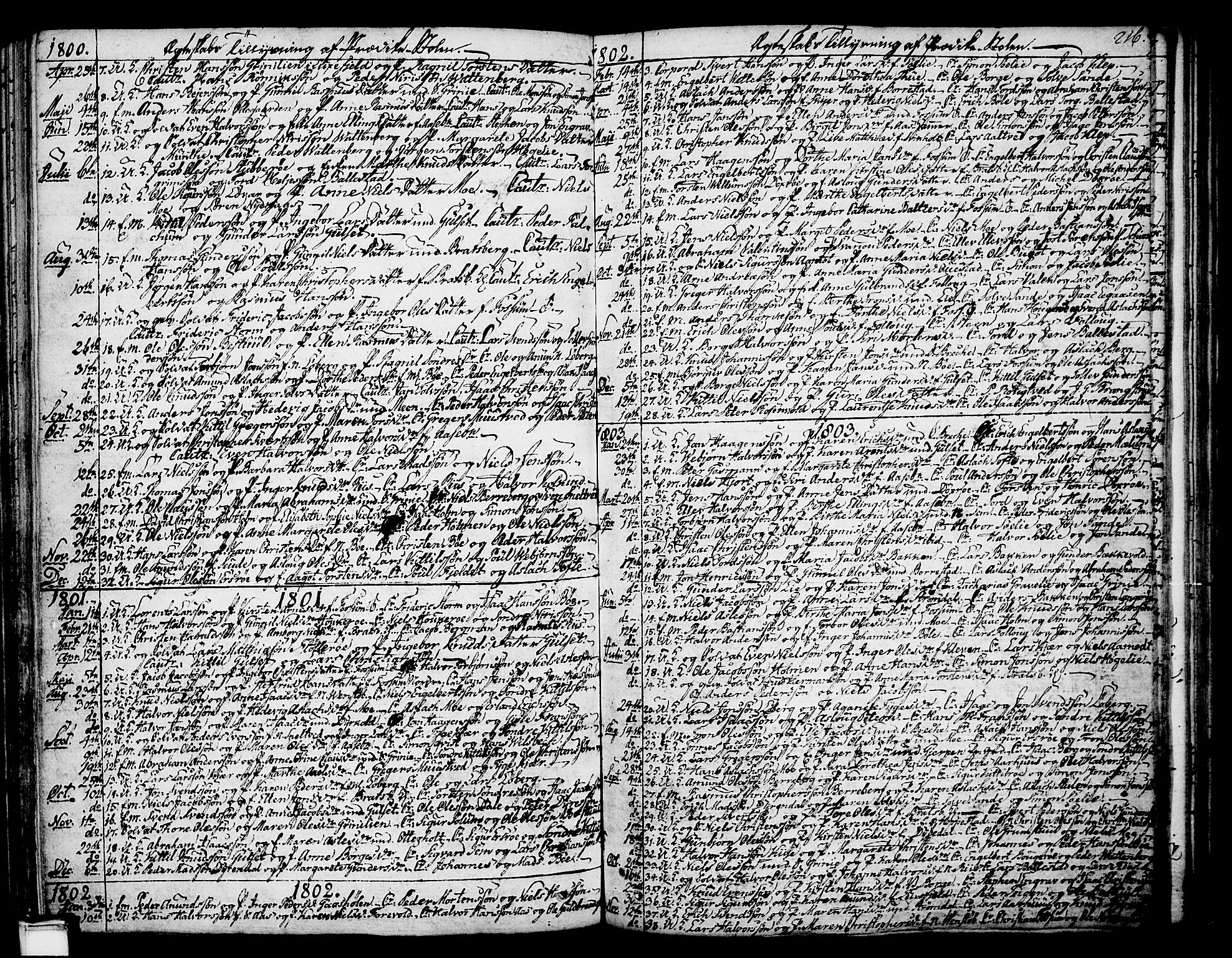 SAKO, Gjerpen kirkebøker, F/Fa/L0003: Ministerialbok nr. 3, 1796-1814, s. 216
