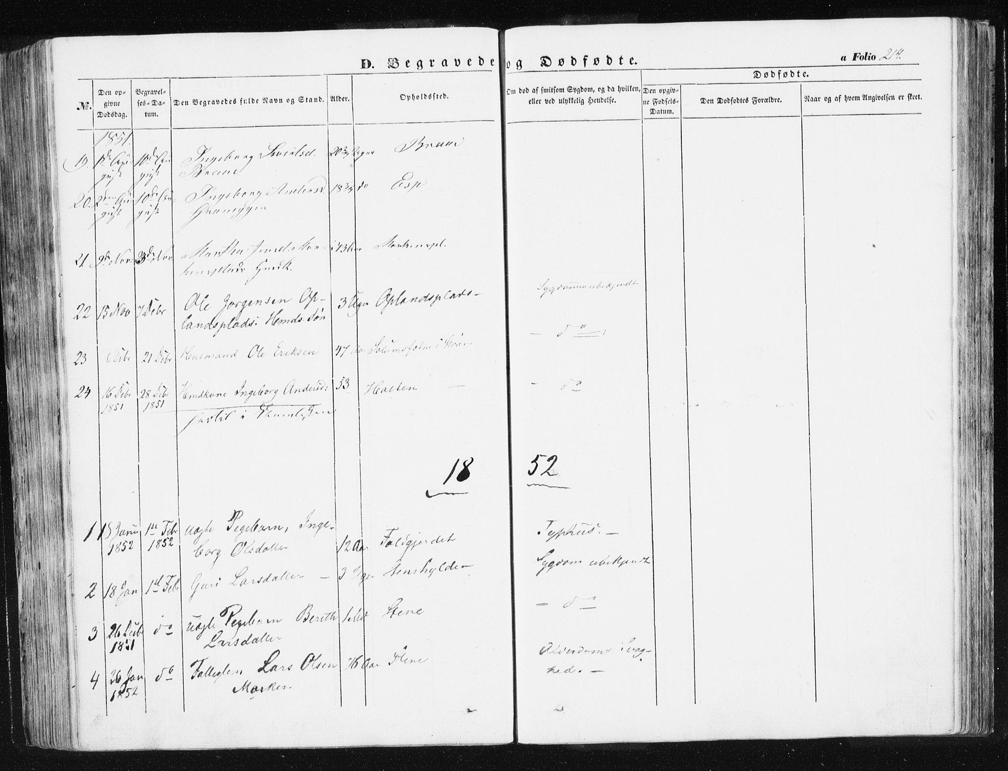 SAT, Ministerialprotokoller, klokkerbøker og fødselsregistre - Sør-Trøndelag, 612/L0376: Ministerialbok nr. 612A08, 1846-1859, s. 214