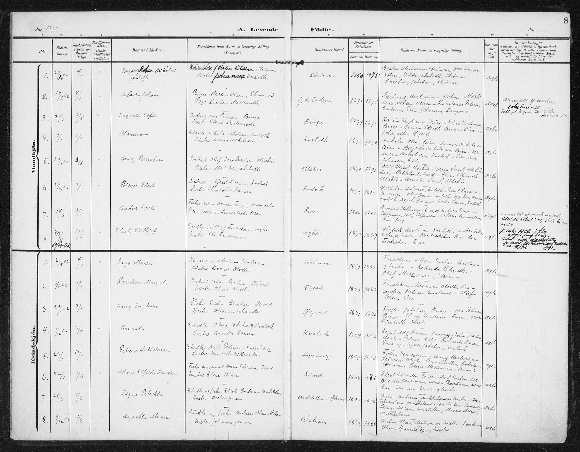 SAT, Ministerialprotokoller, klokkerbøker og fødselsregistre - Nordland, 892/L1321: Ministerialbok nr. 892A02, 1902-1918, s. 8