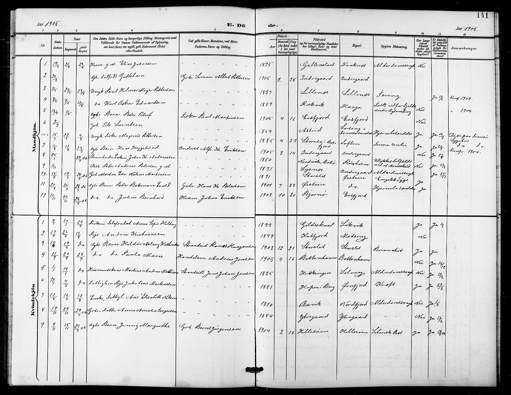 SATØ, Lenvik sokneprestembete, H/Ha: Klokkerbok nr. 22, 1901-1918, s. 141