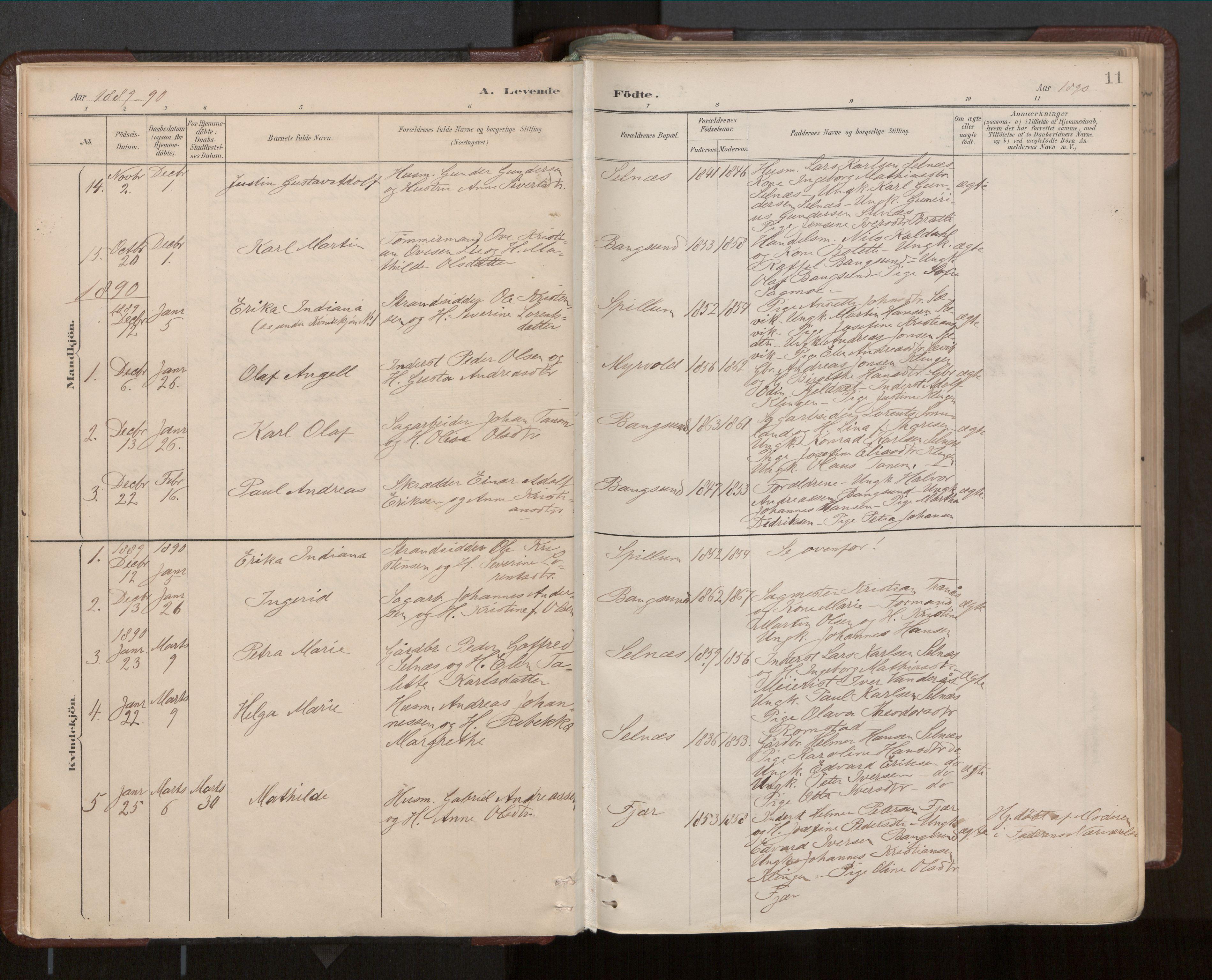 SAT, Ministerialprotokoller, klokkerbøker og fødselsregistre - Nord-Trøndelag, 770/L0589: Ministerialbok nr. 770A03, 1887-1929, s. 11