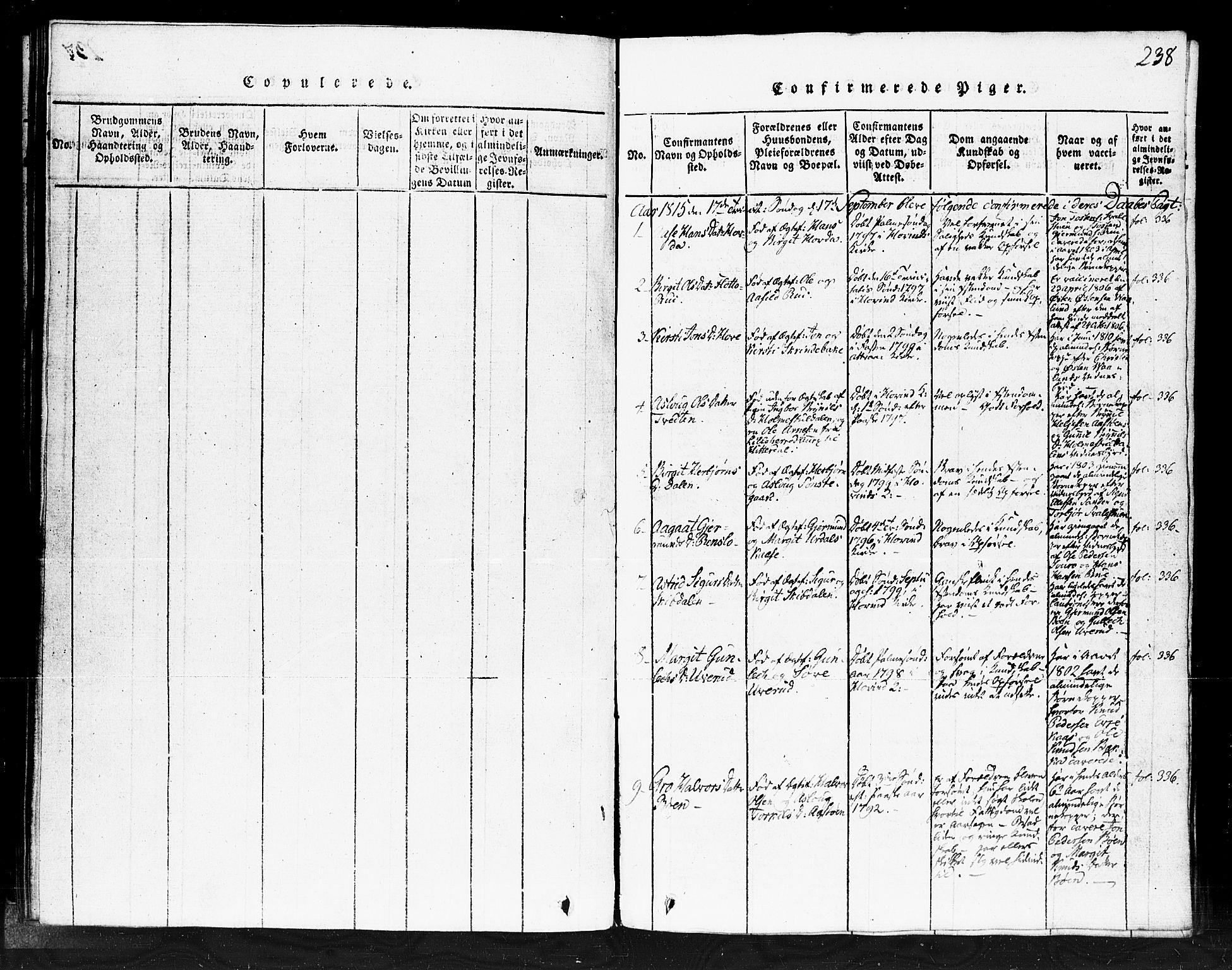 SAKO, Gransherad kirkebøker, F/Fb/L0002: Ministerialbok nr. II 2, 1815-1843, s. 238