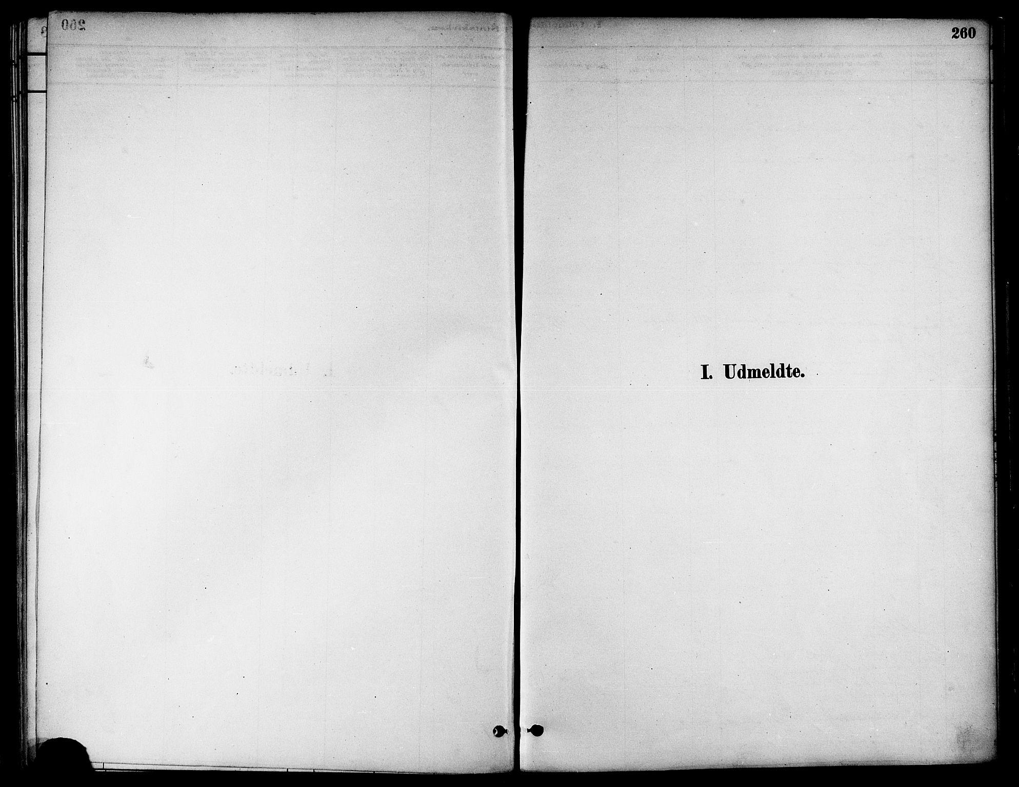 SAT, Ministerialprotokoller, klokkerbøker og fødselsregistre - Nord-Trøndelag, 739/L0371: Ministerialbok nr. 739A03, 1881-1895, s. 260