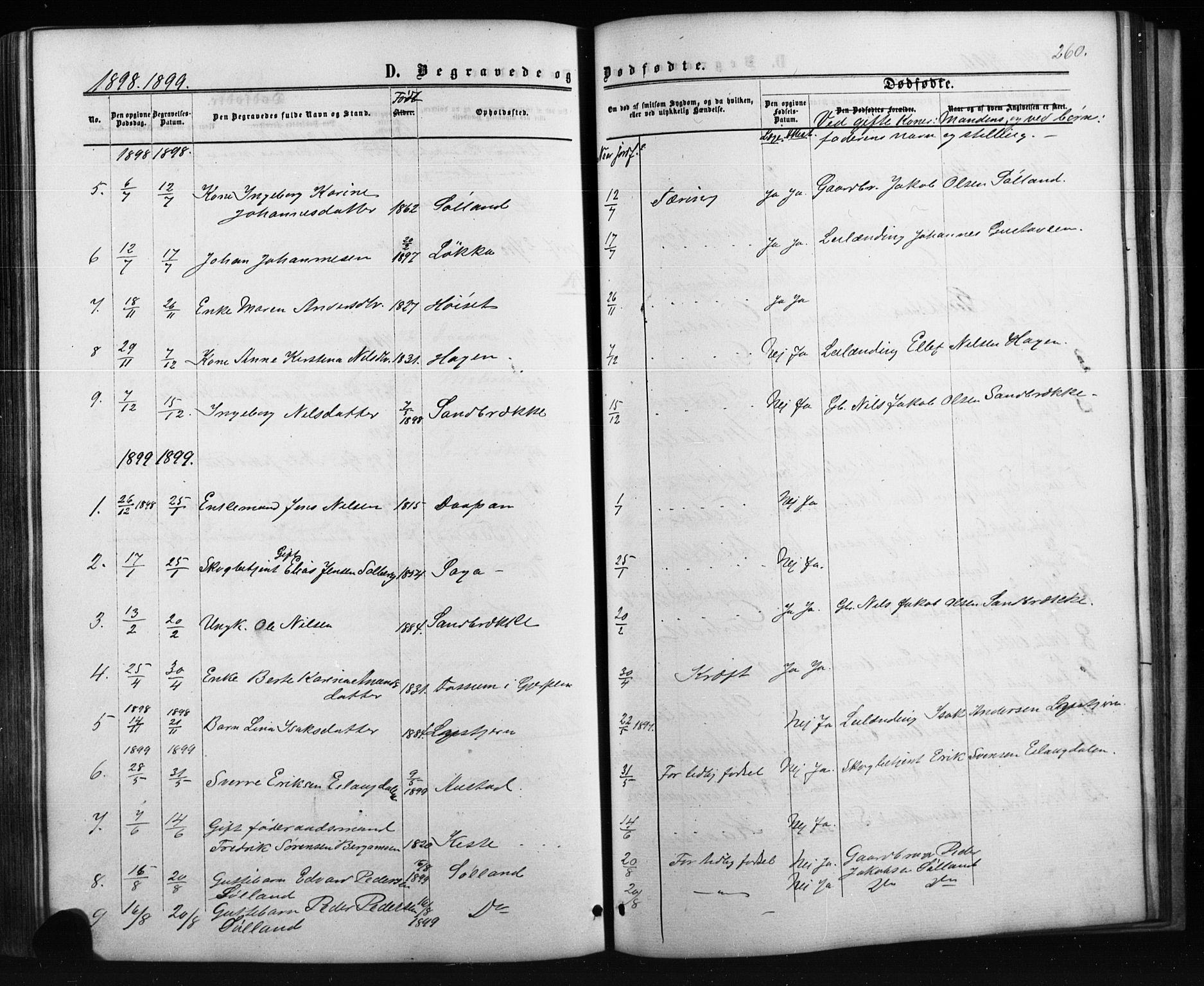 SAKO, Siljan kirkebøker, G/Ga/L0002: Klokkerbok nr. 2, 1864-1908, s. 260