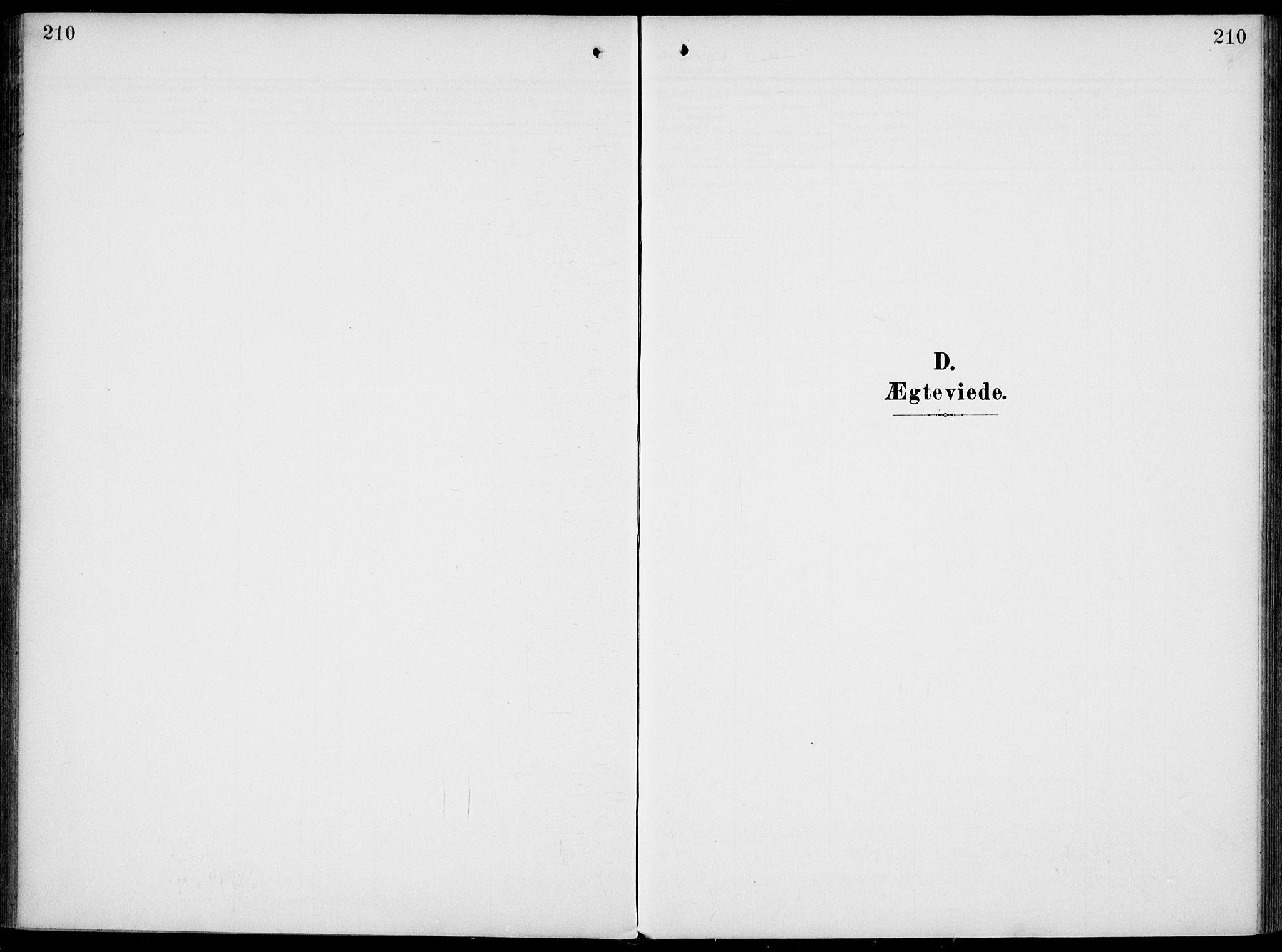 SAKO, Gjerpen kirkebøker, F/Fa/L0012: Ministerialbok nr. 12, 1905-1913, s. 210