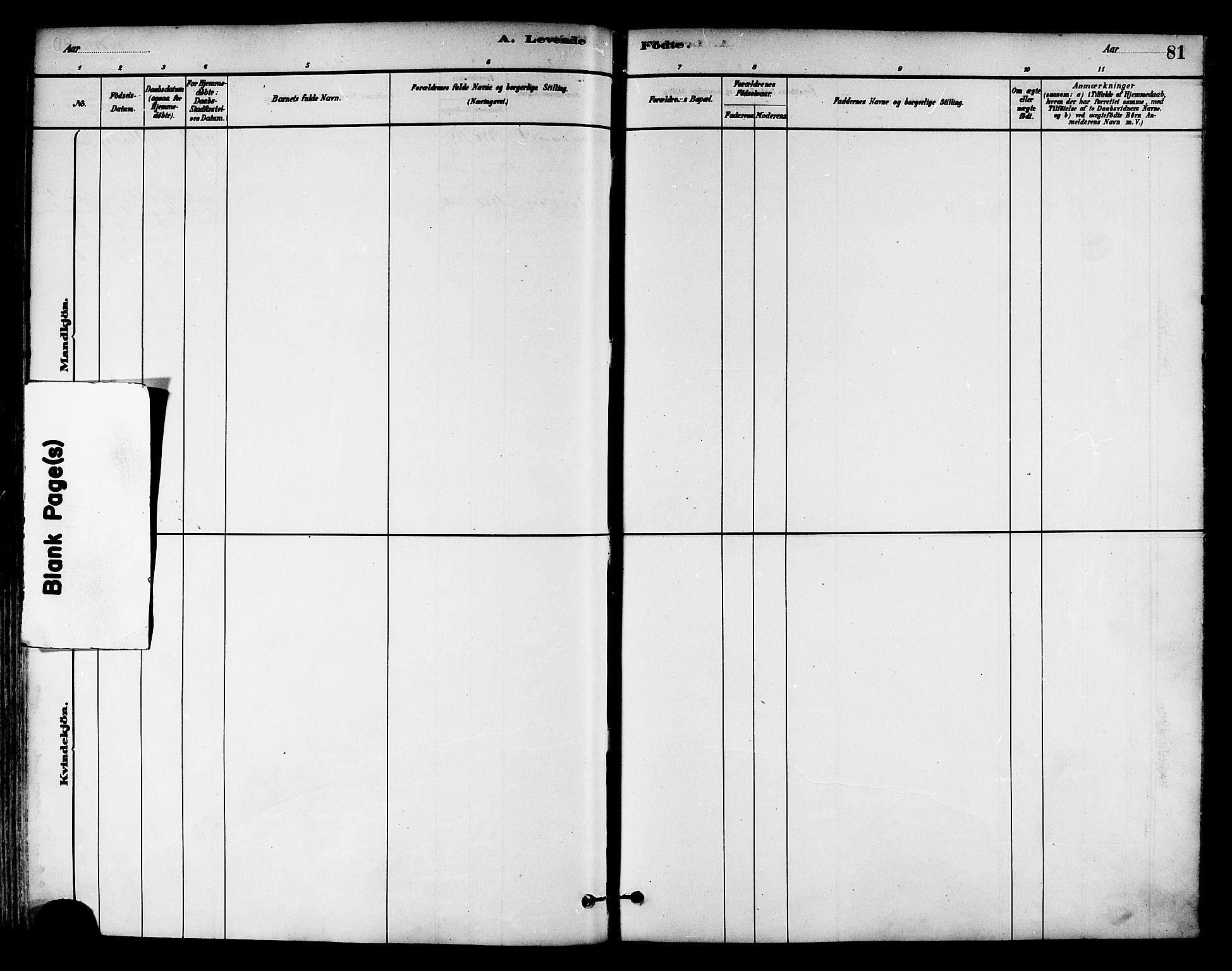 SAT, Ministerialprotokoller, klokkerbøker og fødselsregistre - Nord-Trøndelag, 786/L0686: Ministerialbok nr. 786A02, 1880-1887, s. 81