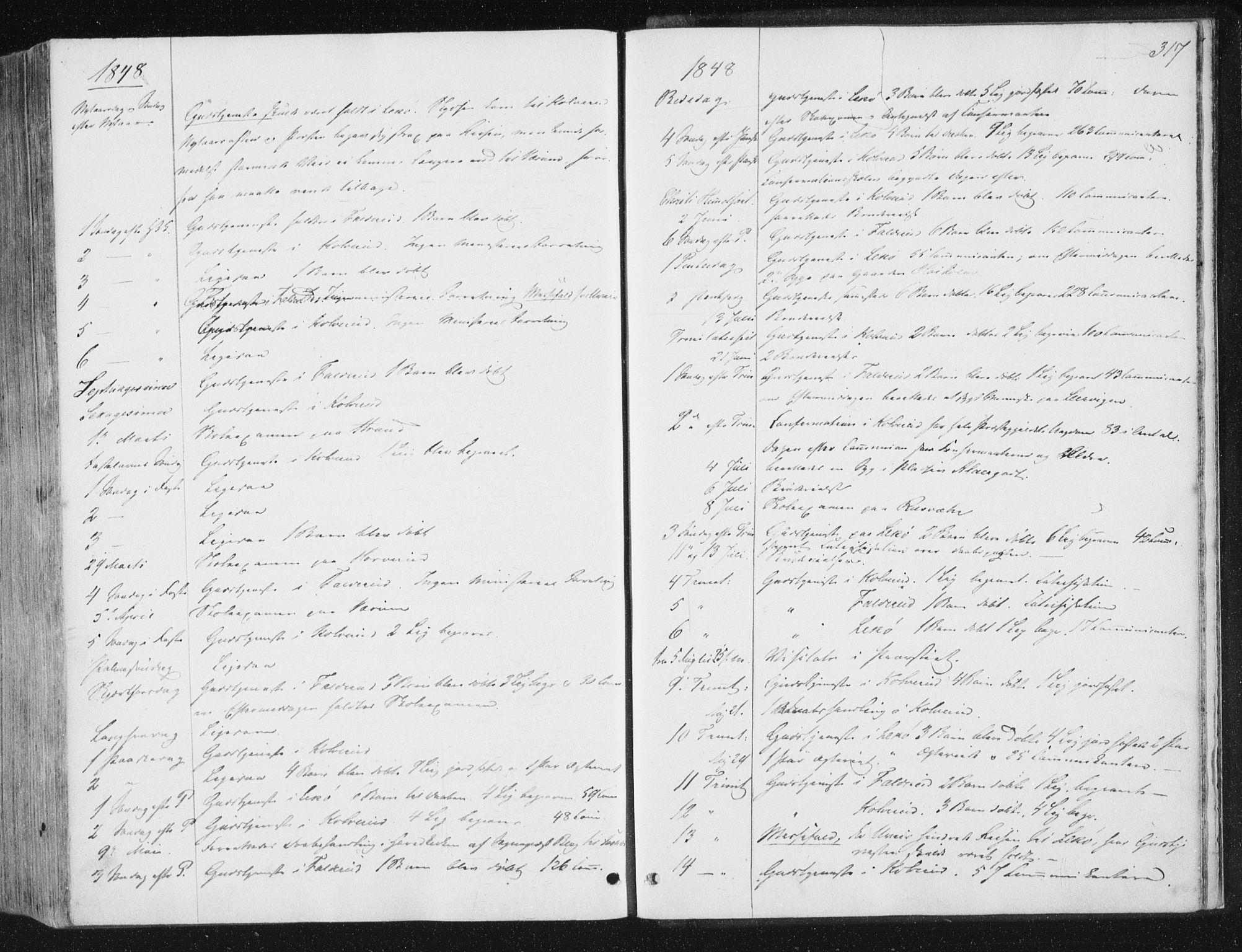 SAT, Ministerialprotokoller, klokkerbøker og fødselsregistre - Nord-Trøndelag, 780/L0640: Ministerialbok nr. 780A05, 1845-1856, s. 317