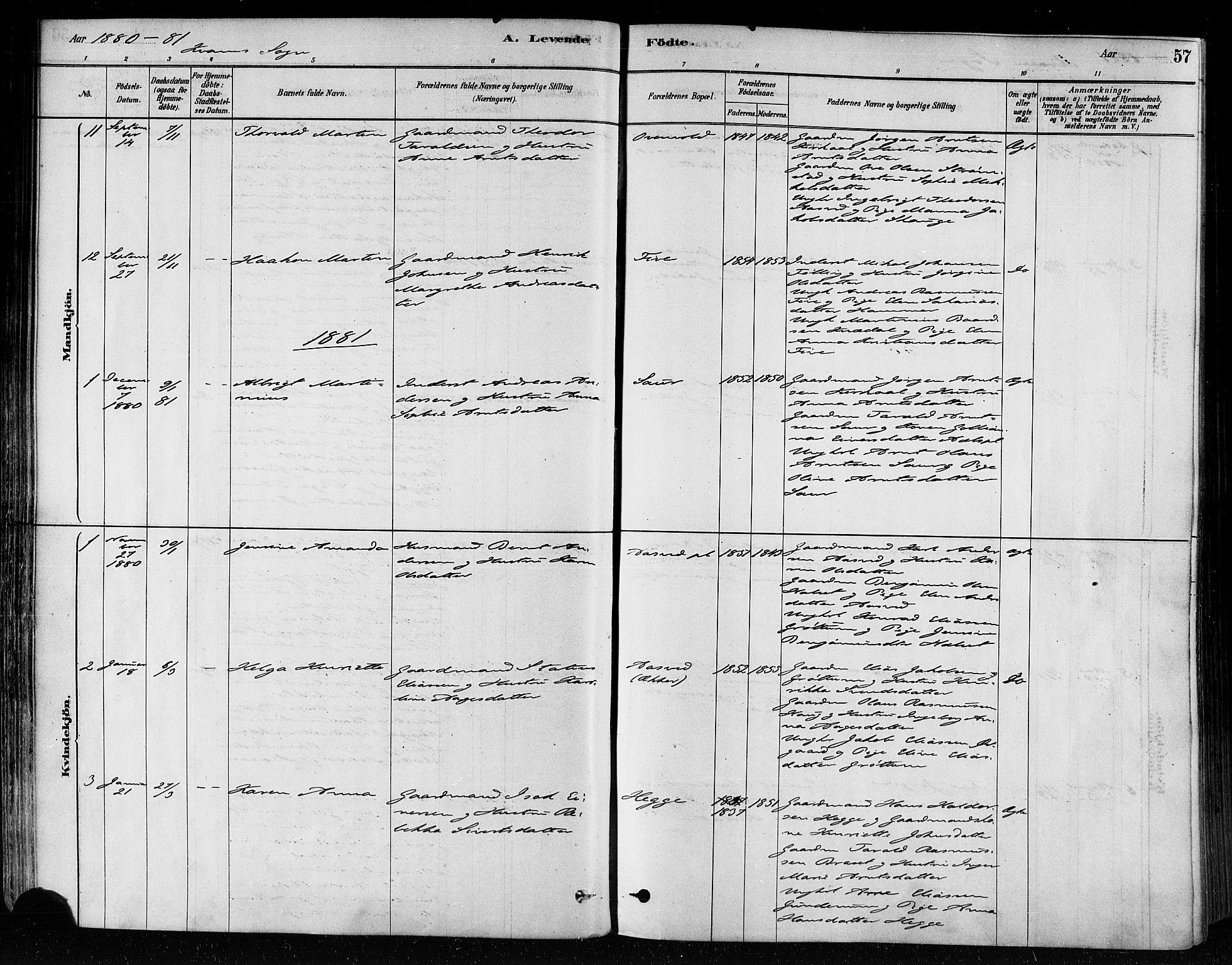SAT, Ministerialprotokoller, klokkerbøker og fødselsregistre - Nord-Trøndelag, 746/L0449: Ministerialbok nr. 746A07 /2, 1878-1899, s. 57