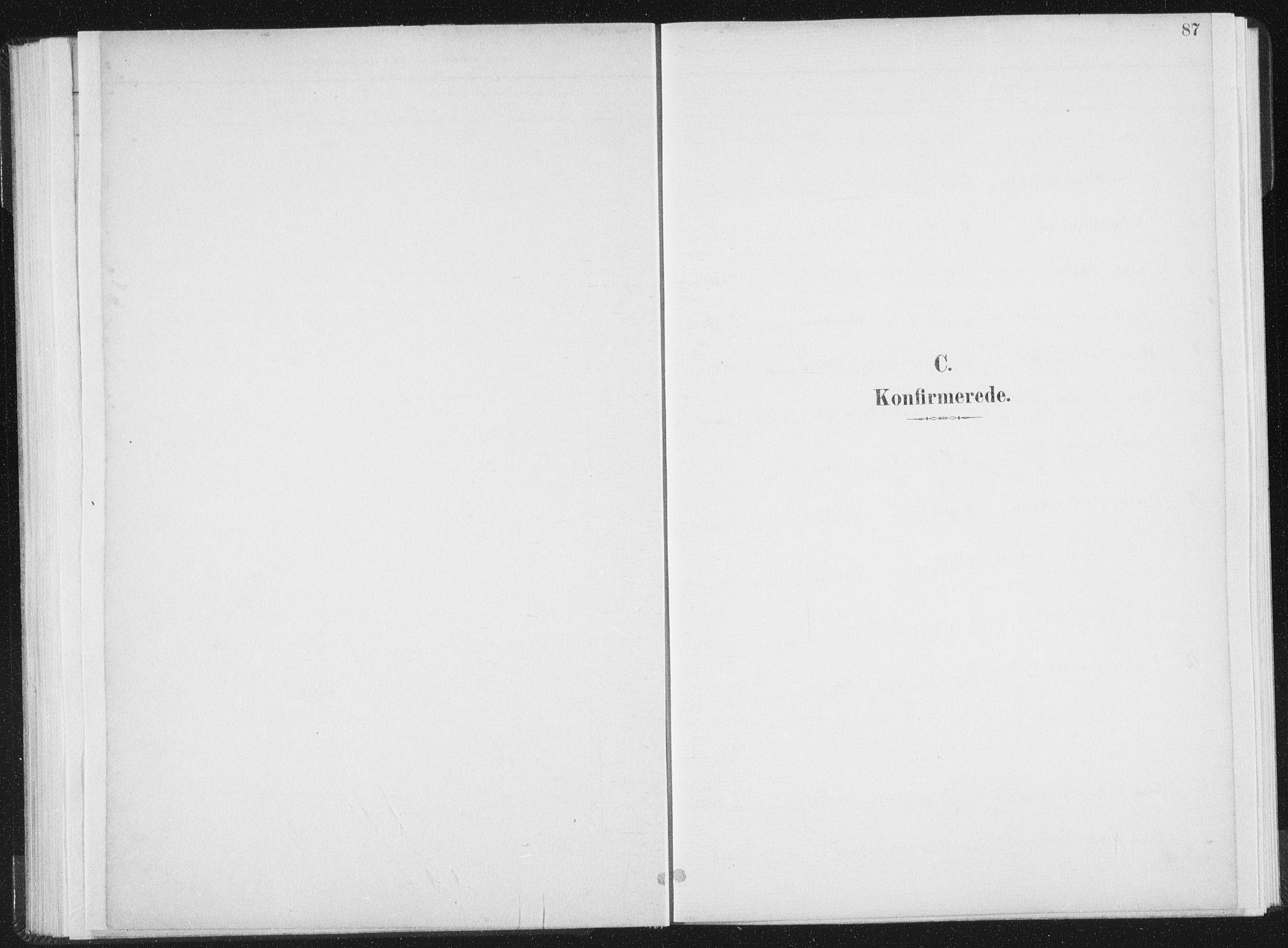 SAT, Ministerialprotokoller, klokkerbøker og fødselsregistre - Nord-Trøndelag, 771/L0597: Ministerialbok nr. 771A04, 1885-1910, s. 87