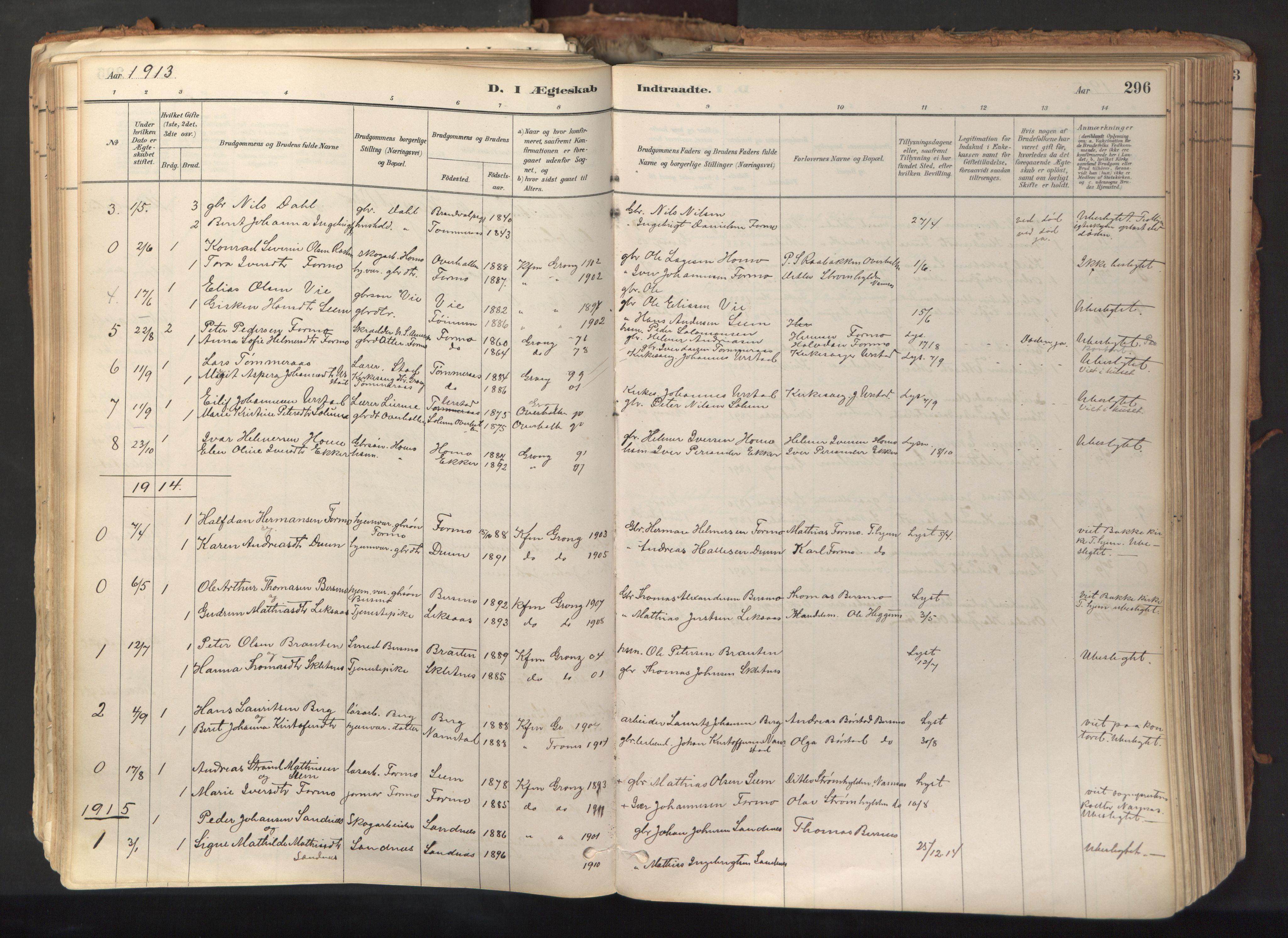 SAT, Ministerialprotokoller, klokkerbøker og fødselsregistre - Nord-Trøndelag, 758/L0519: Ministerialbok nr. 758A04, 1880-1926, s. 296