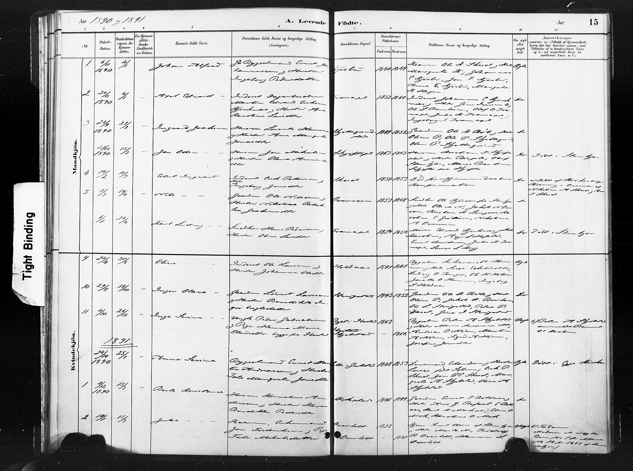SAT, Ministerialprotokoller, klokkerbøker og fødselsregistre - Nord-Trøndelag, 736/L0361: Ministerialbok nr. 736A01, 1884-1906, s. 15