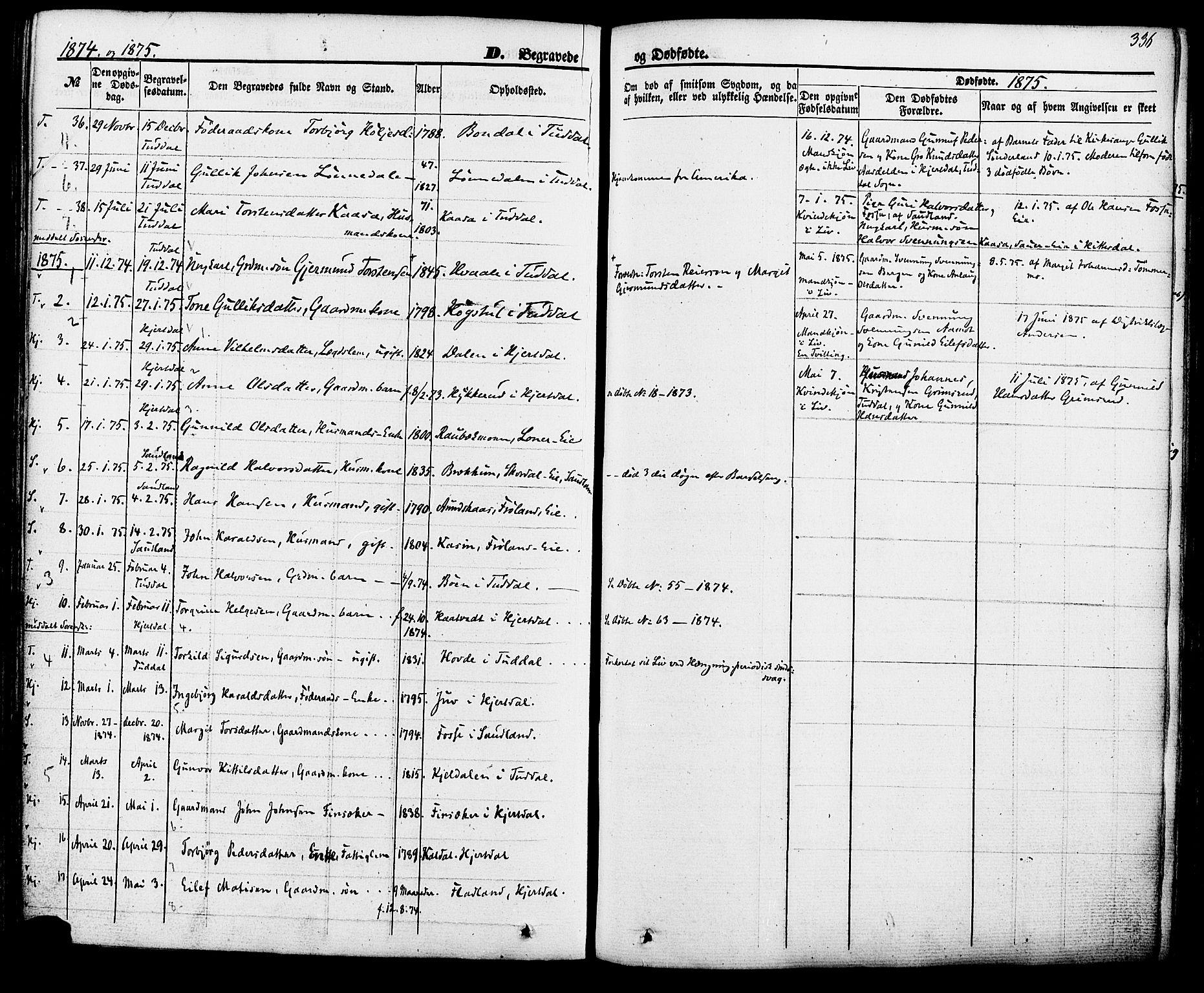 SAKO, Hjartdal kirkebøker, F/Fa/L0009: Ministerialbok nr. I 9, 1860-1879, s. 336