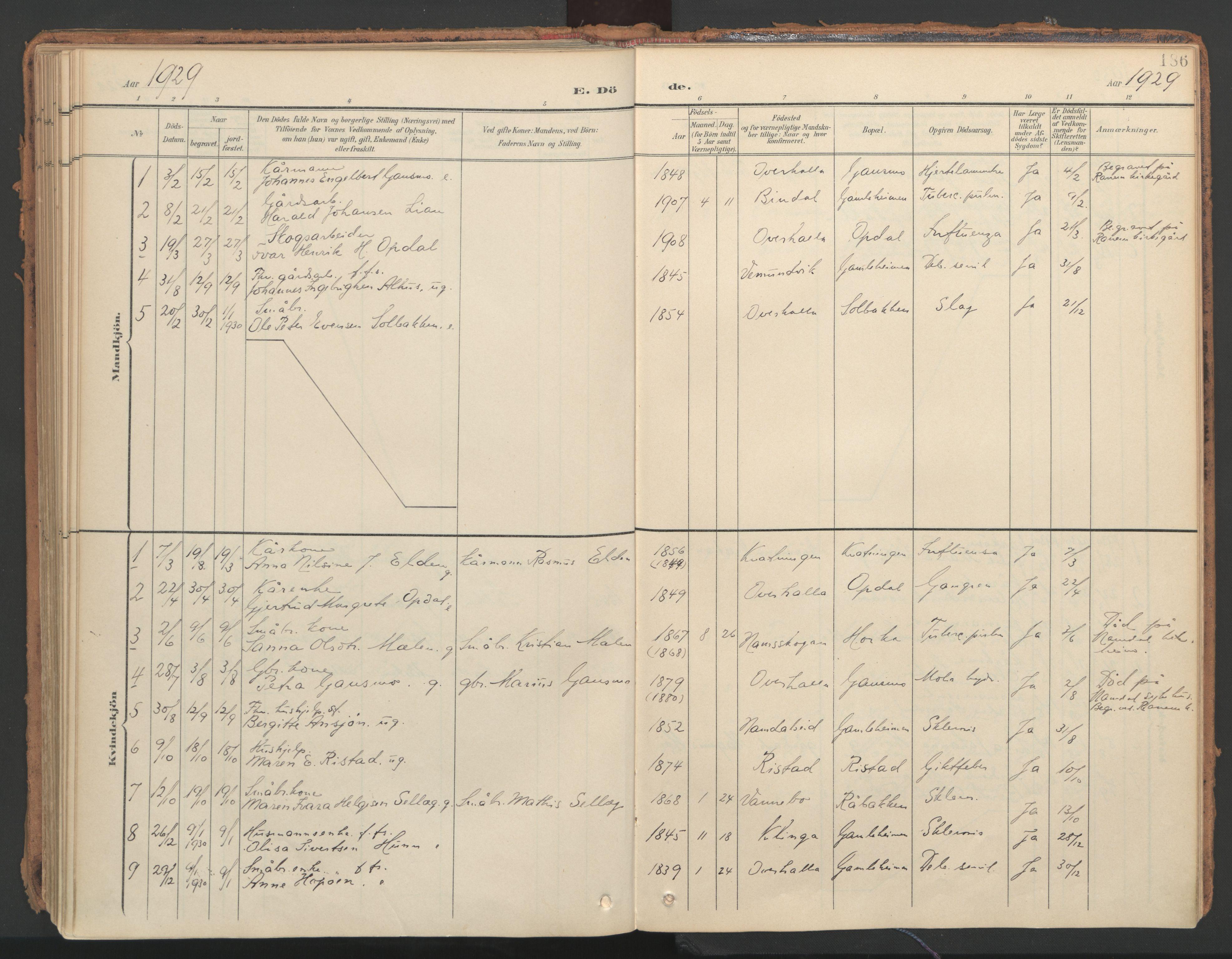 SAT, Ministerialprotokoller, klokkerbøker og fødselsregistre - Nord-Trøndelag, 766/L0564: Ministerialbok nr. 767A02, 1900-1932, s. 186