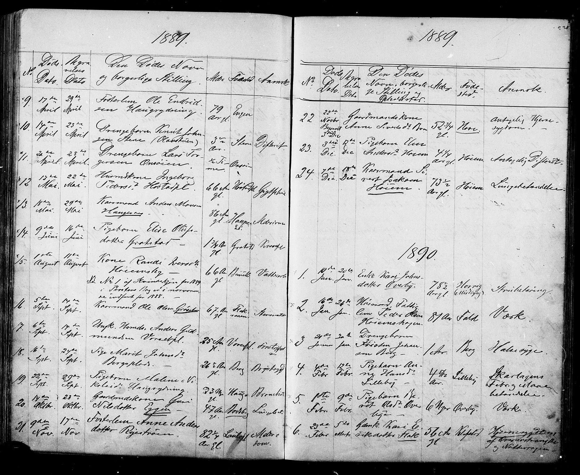 SAT, Ministerialprotokoller, klokkerbøker og fødselsregistre - Sør-Trøndelag, 612/L0387: Klokkerbok nr. 612C03, 1874-1908, s. 228