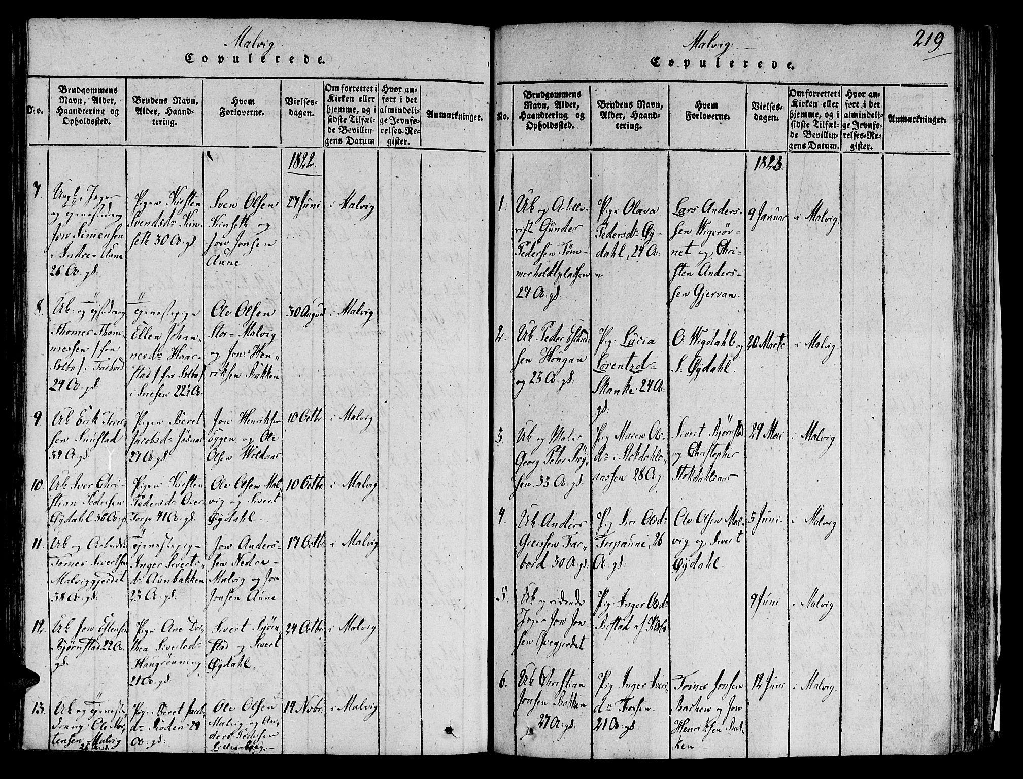 SAT, Ministerialprotokoller, klokkerbøker og fødselsregistre - Sør-Trøndelag, 606/L0284: Ministerialbok nr. 606A03 /2, 1819-1823, s. 219