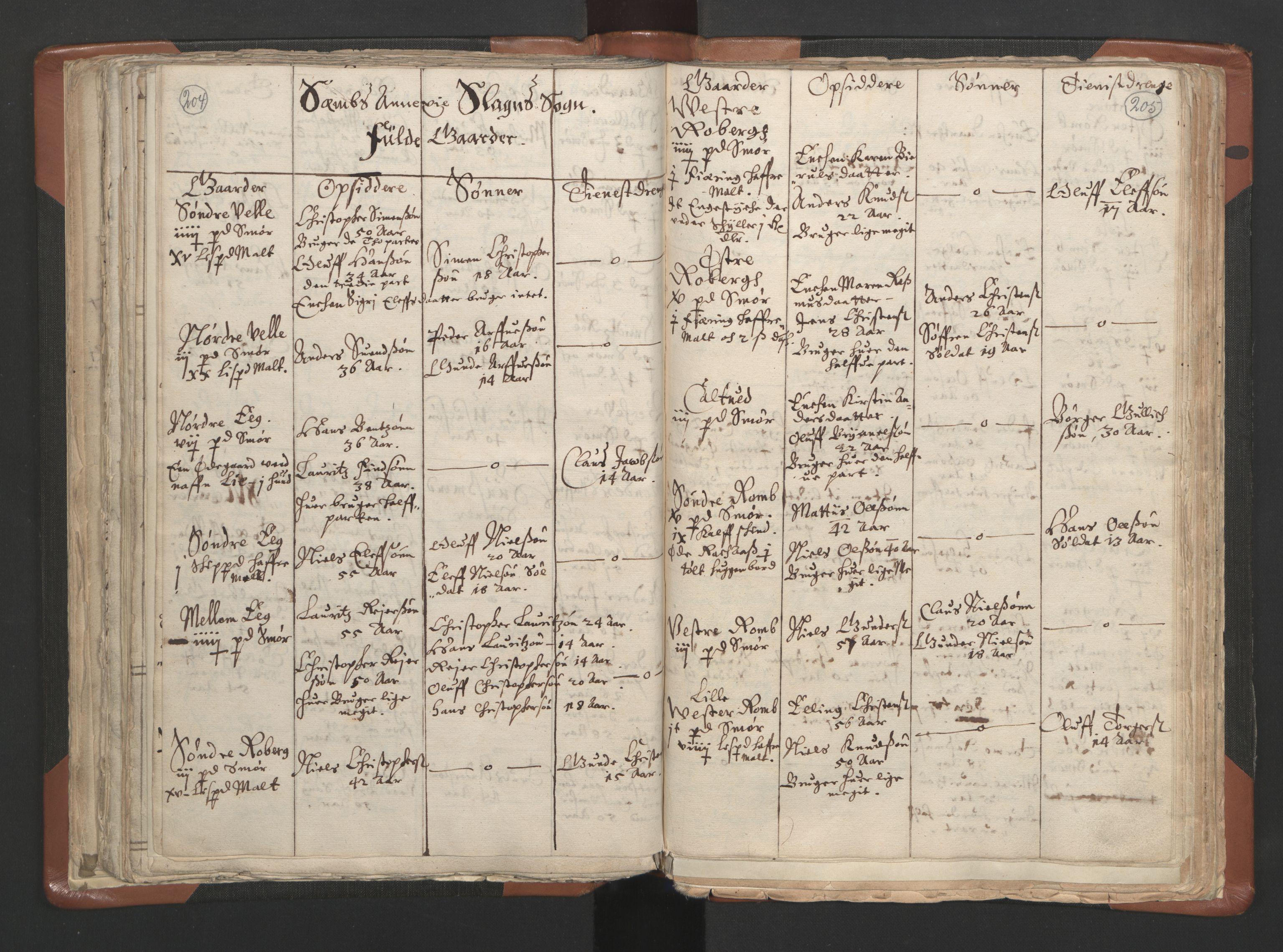 RA, Sogneprestenes manntall 1664-1666, nr. 10: Tønsberg prosti, 1664-1666, s. 204-205